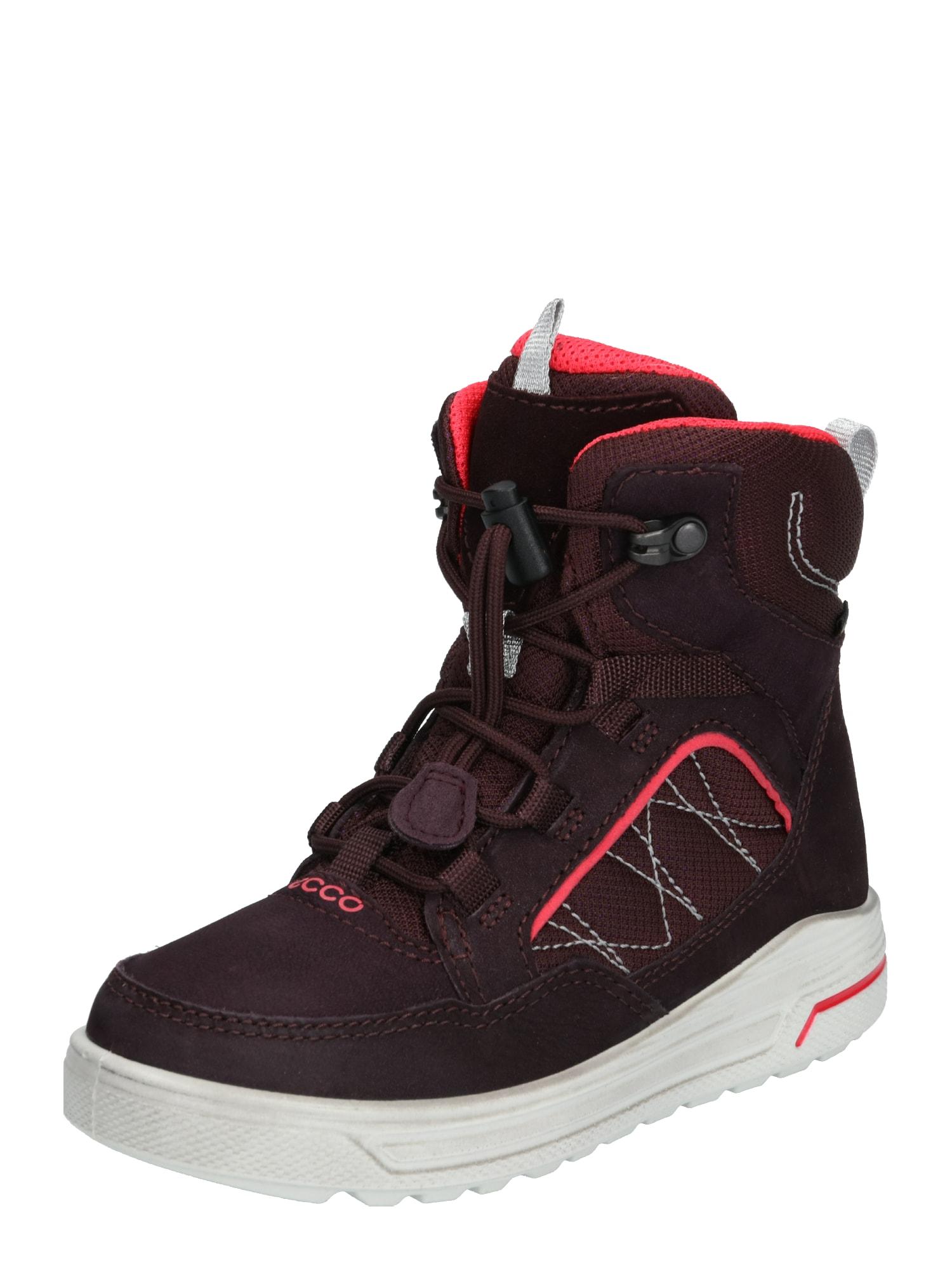 ECCO Sniego batai 'Urban Snowboarder' uogų spalva / spanguolių spalva