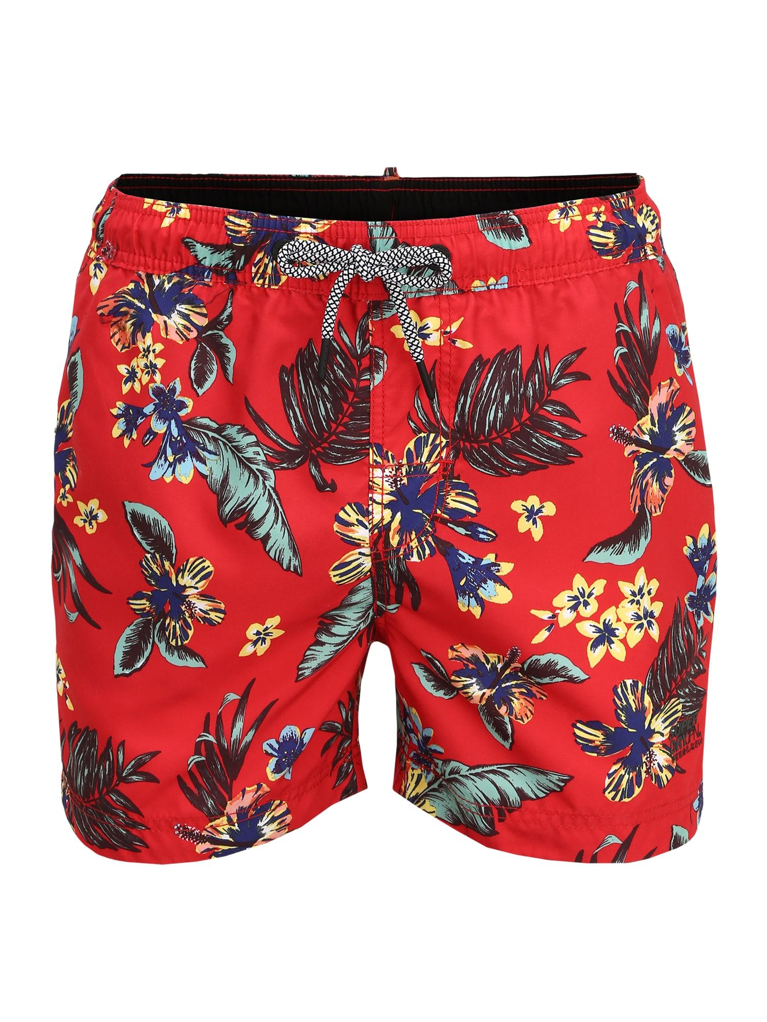 Superdry Plavecké šortky  červené / zmiešané farby