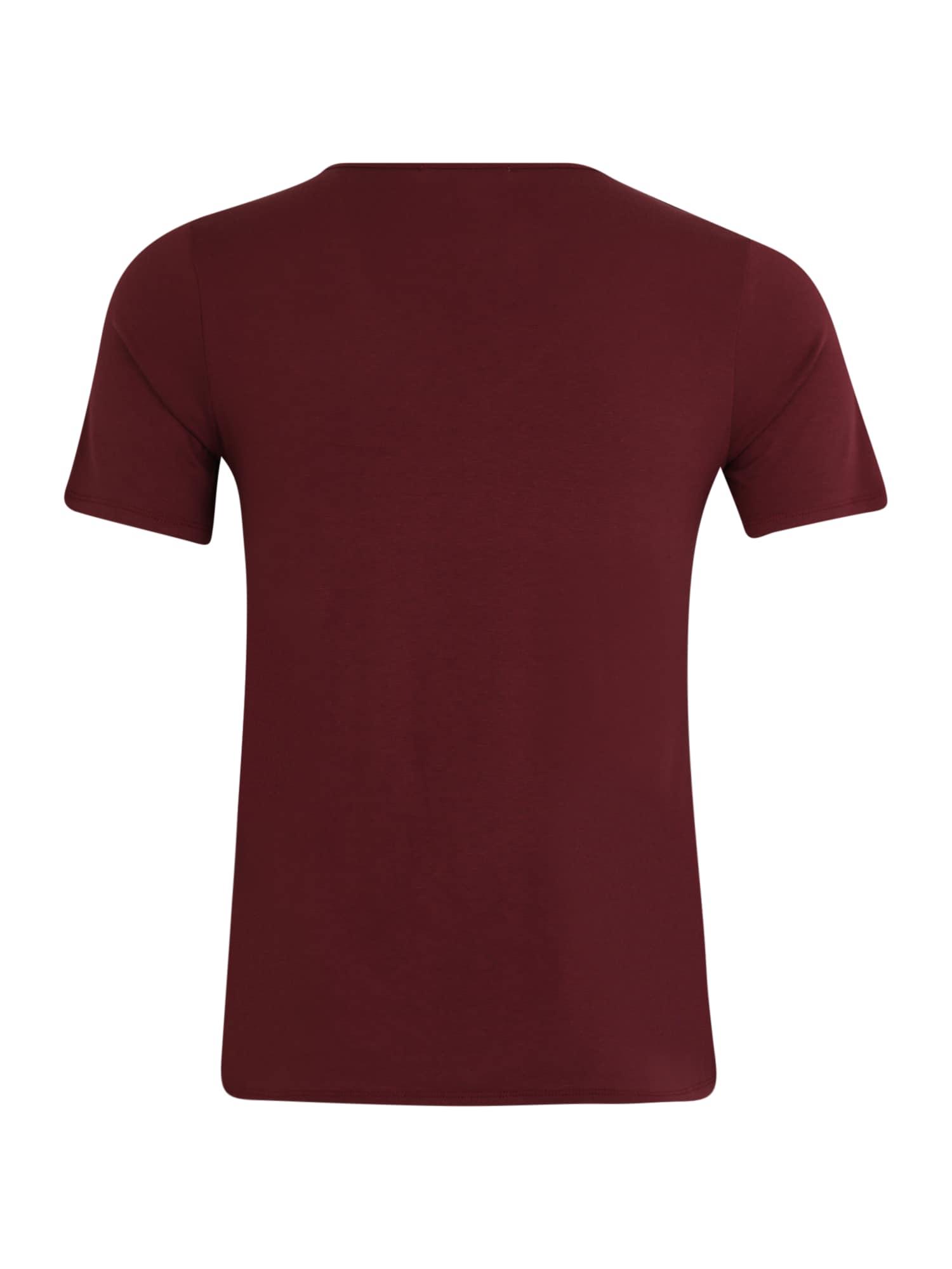 ABOUT YOU Curvy T-shirt 'Asta'  bordeaux