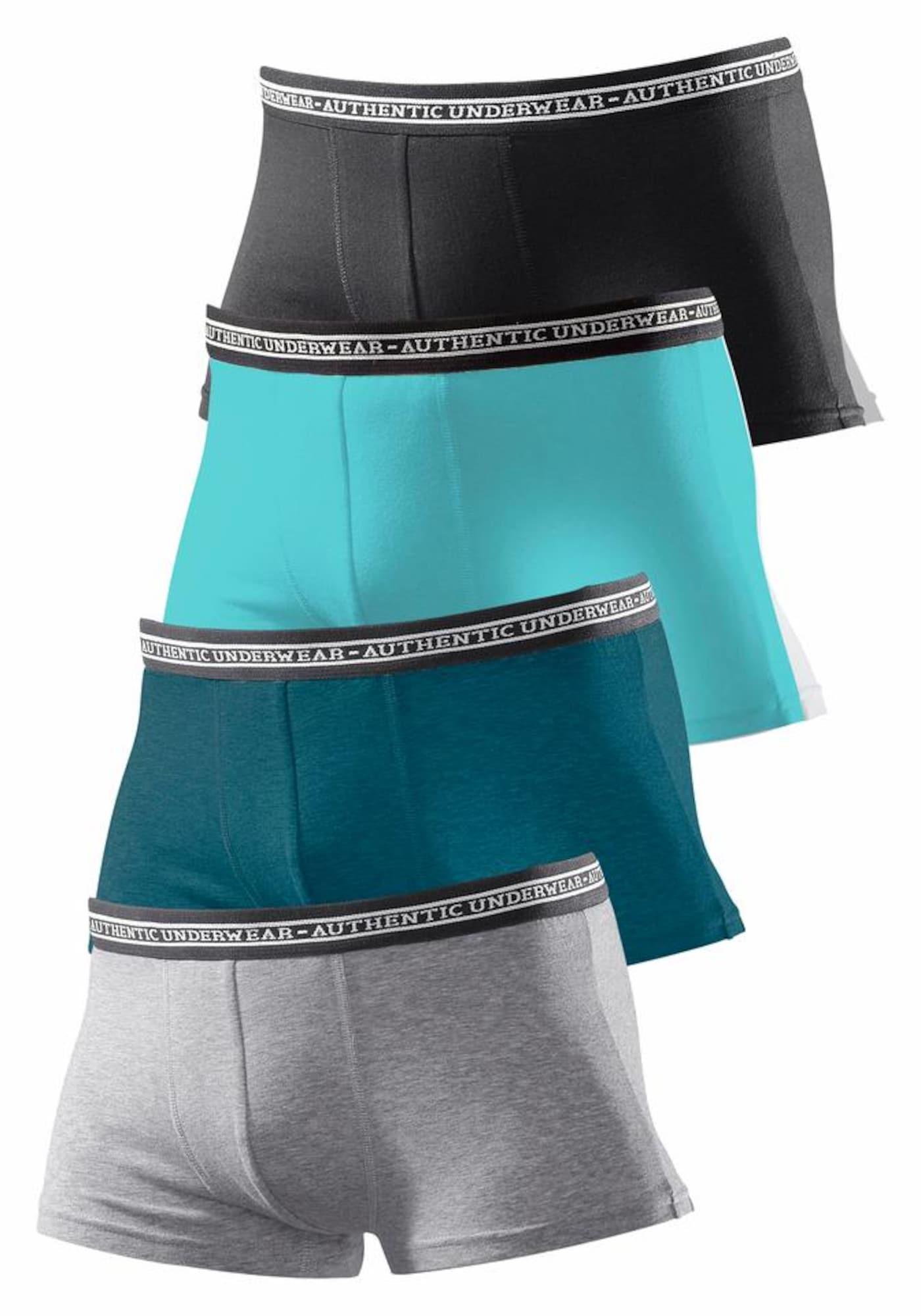 LE JOGGER Apatinės kelnaitės turkio spalva / pilka / benzino spalva / juoda