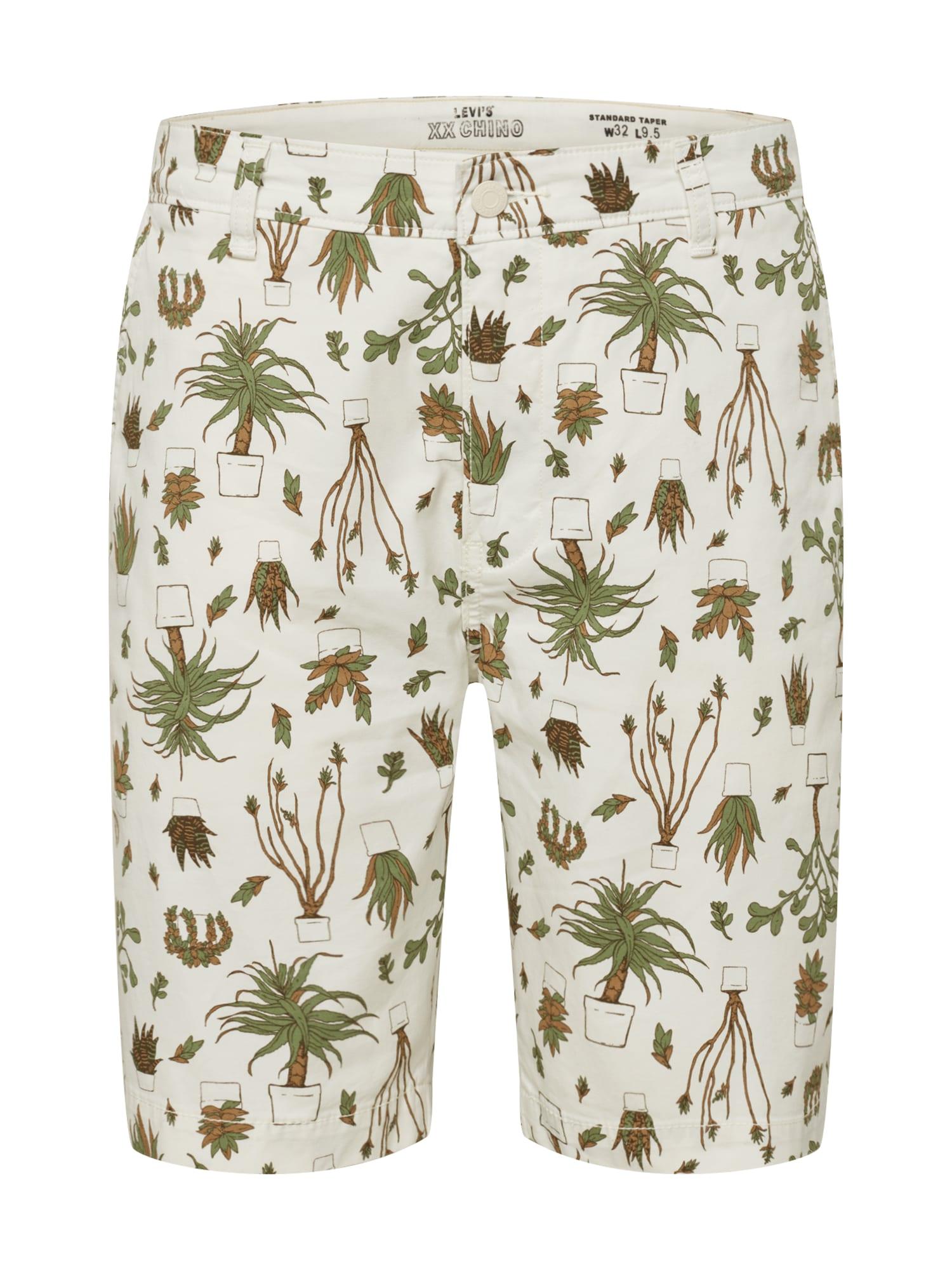 """LEVI'S """"Chino"""" stiliaus kelnės 'STD TPR CHINO SHORT II' alyvuogių spalva / ruda / balkšva"""