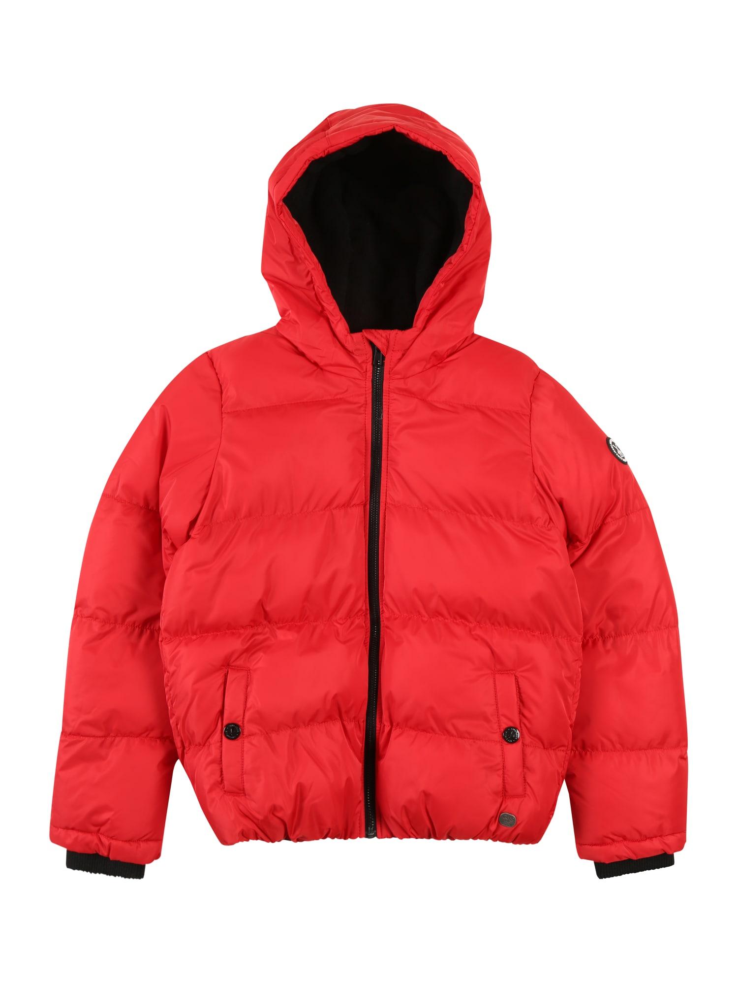 Cars Jeans Žieminė striukė 'NICOLET POLY' raudona