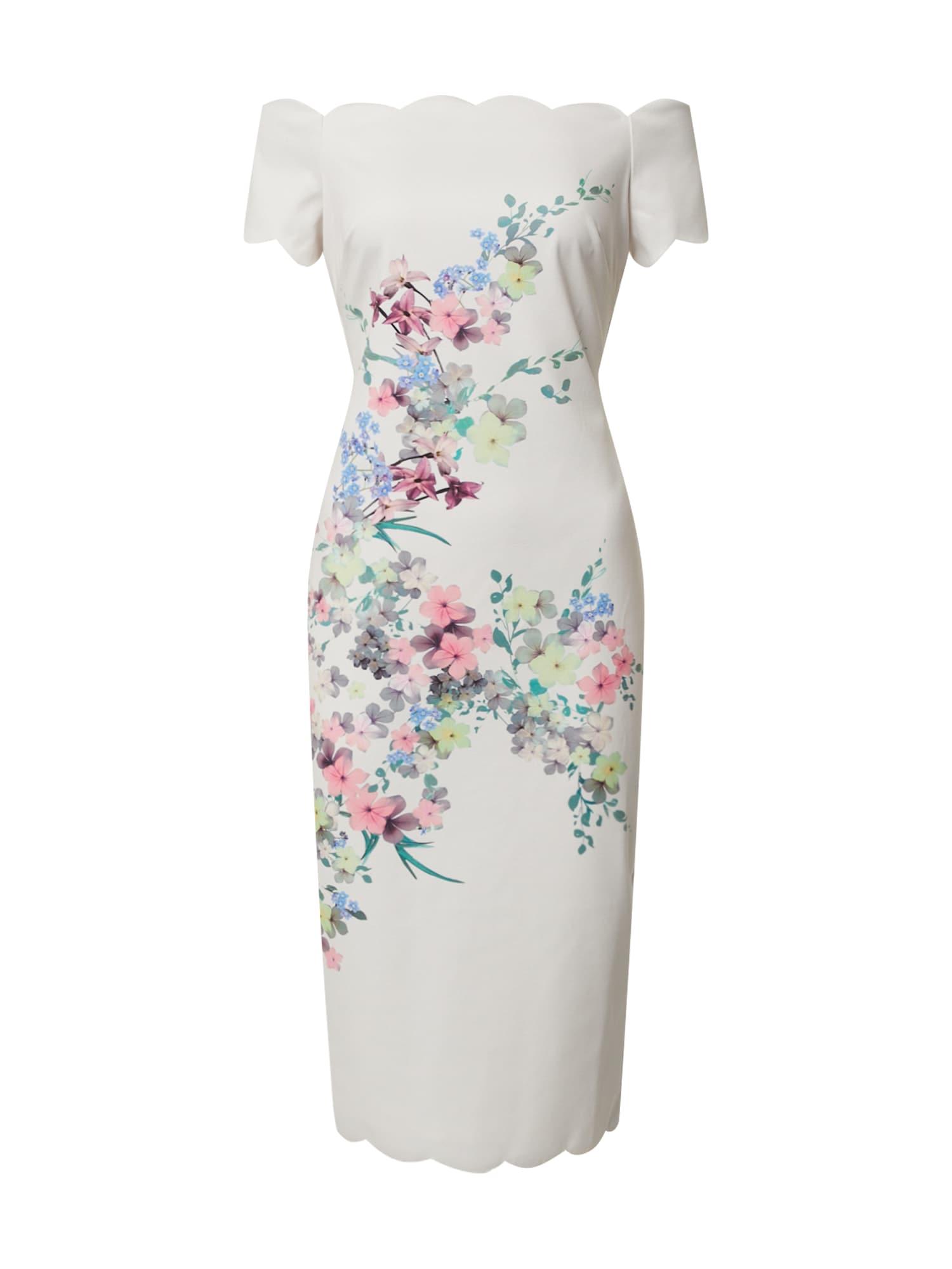 Ted Baker Suknelė 'trixiiy' mišrios spalvos / balta