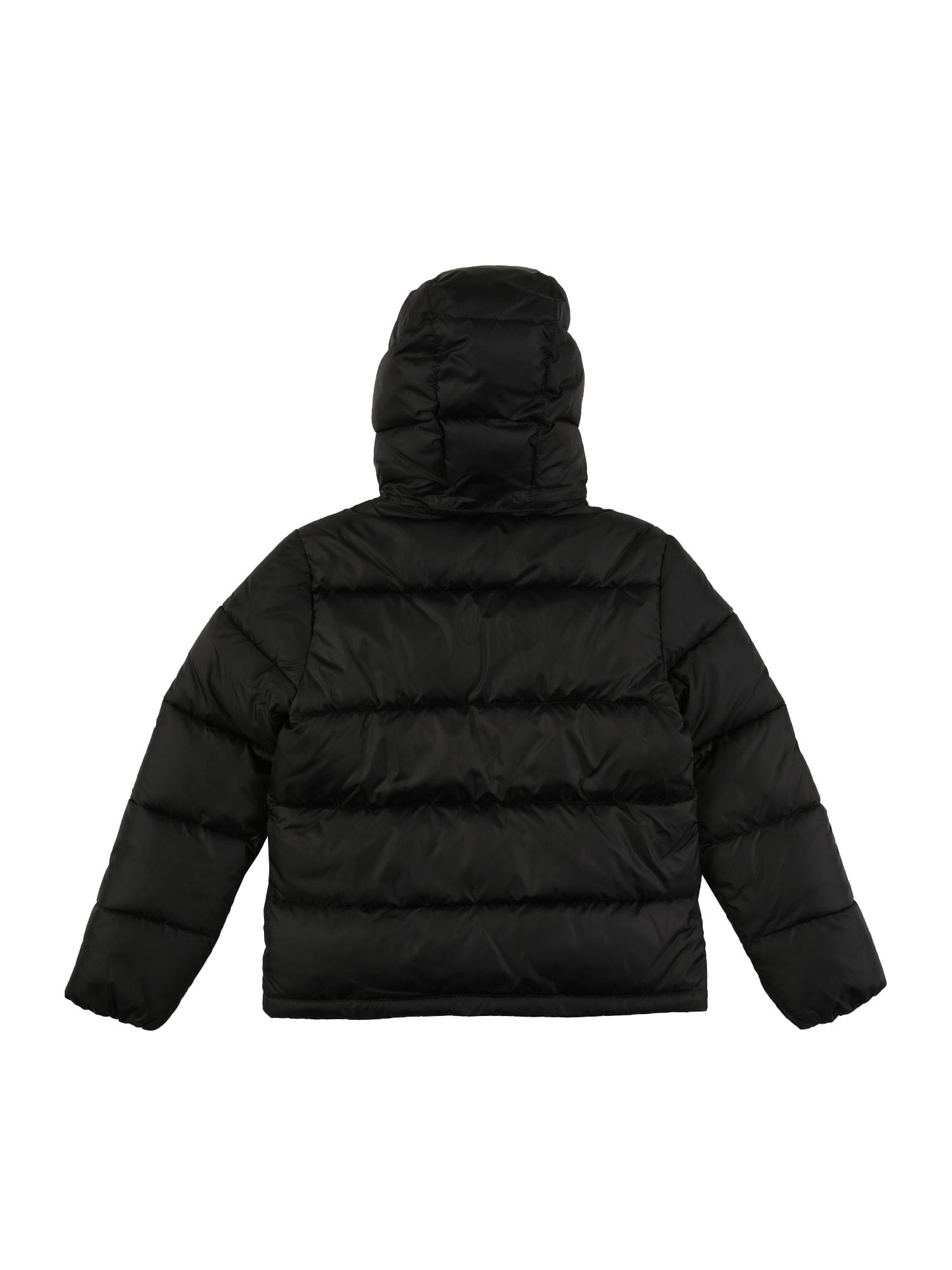 Calvin Klein Jeans Vinterjacka  svart