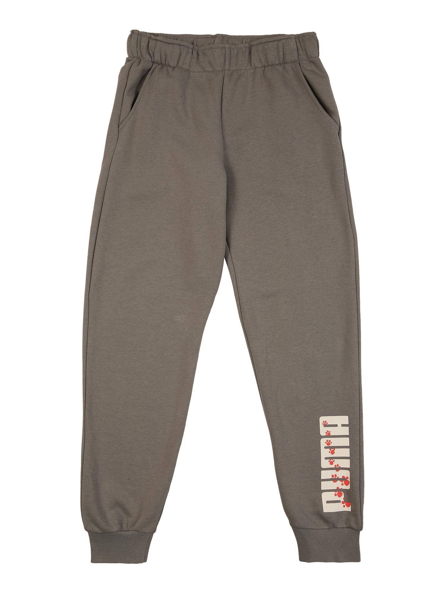 PUMA Sportinės kelnės rausvai pilka