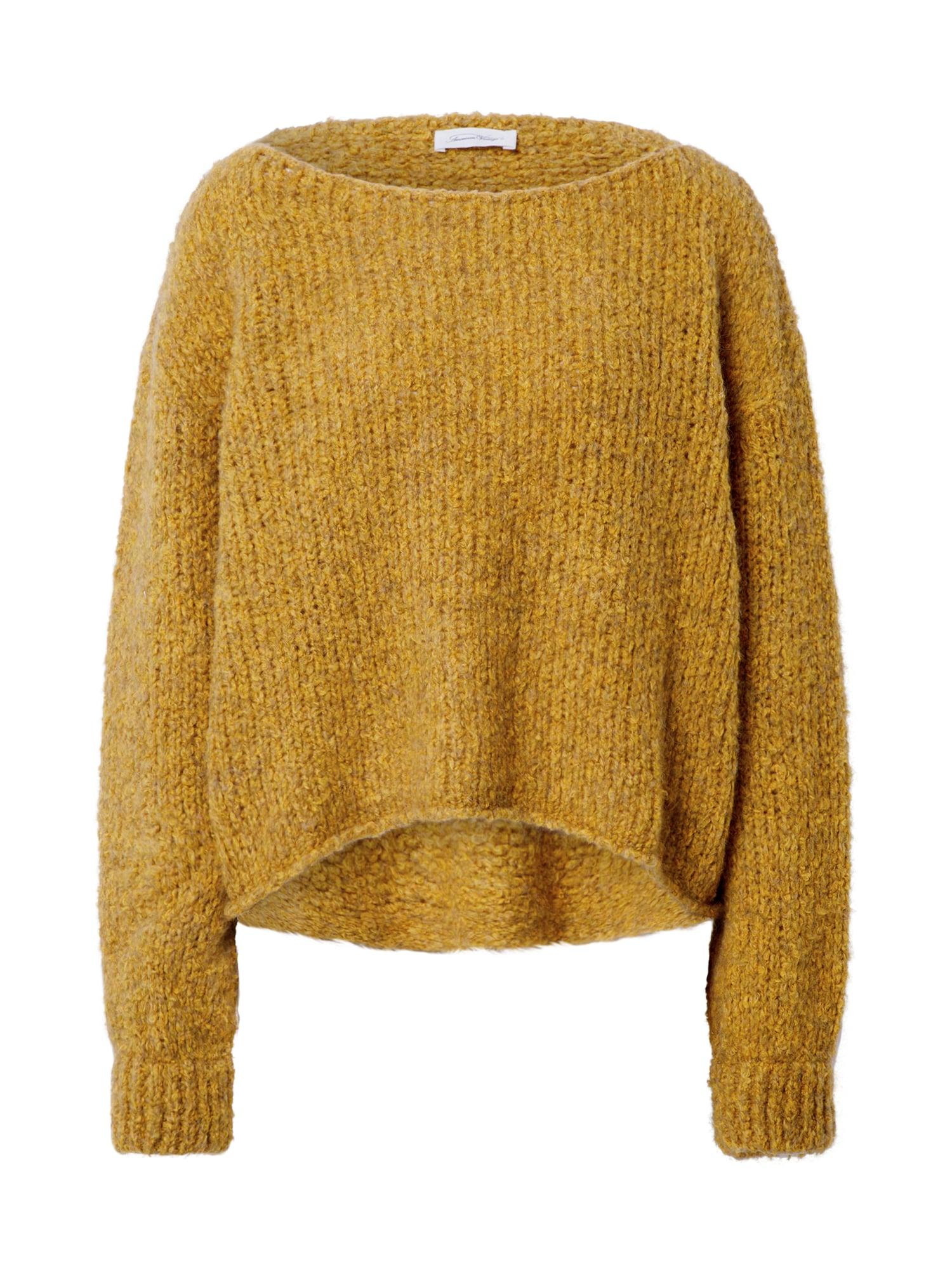 AMERICAN VINTAGE Megztinis 'Tudbury' geltona