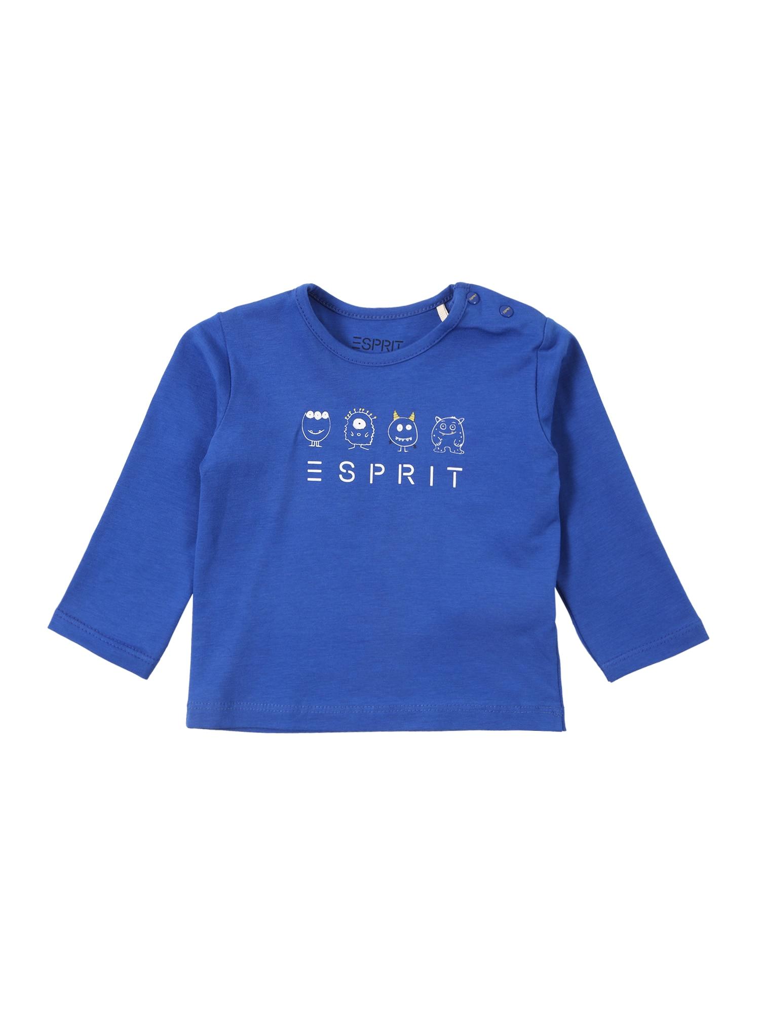 ESPRIT Tričko  modrá / bílá
