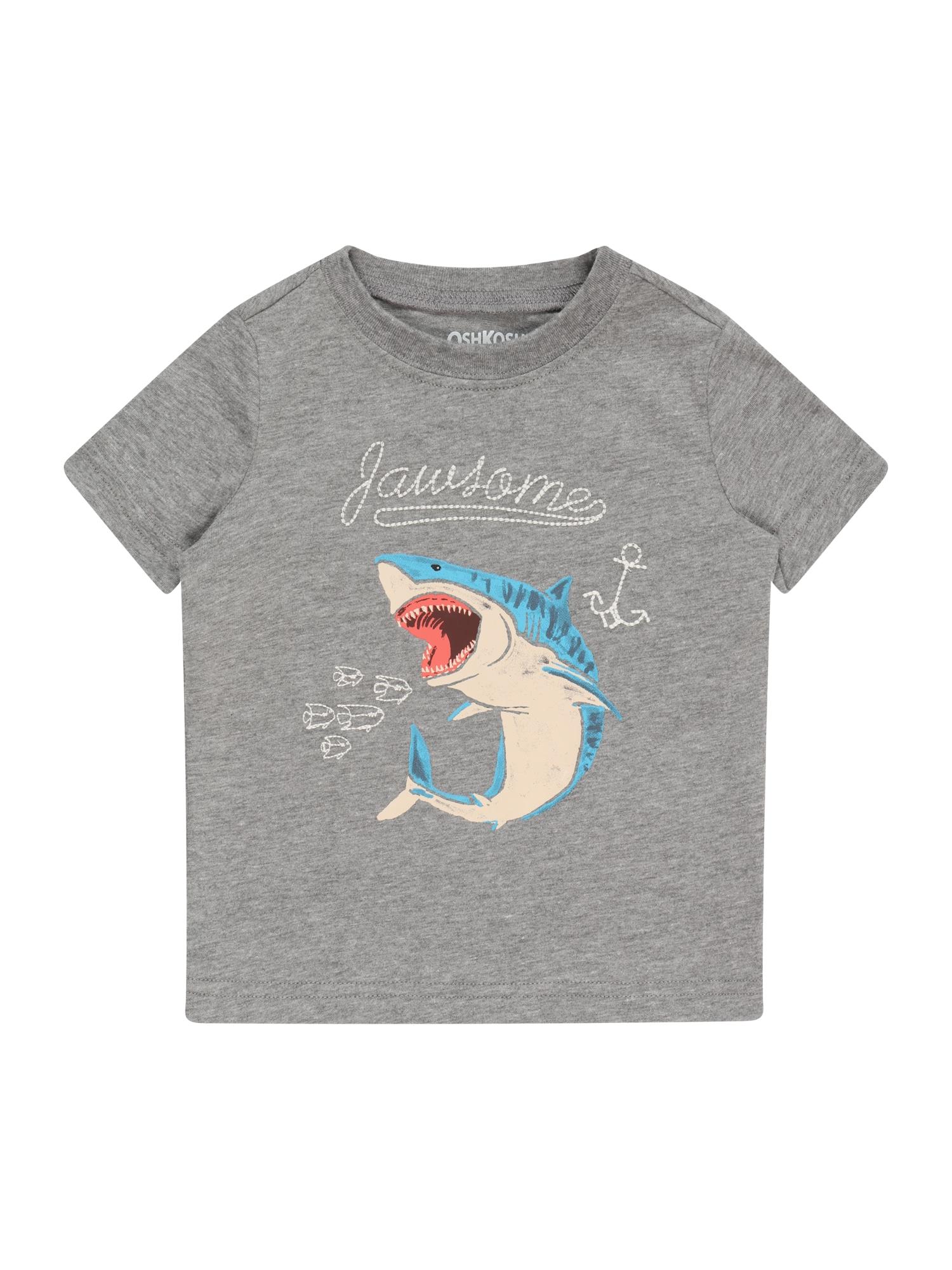 OshKosh Marškinėliai šviesiai pilka / persikų spalva / mėlyna / balta
