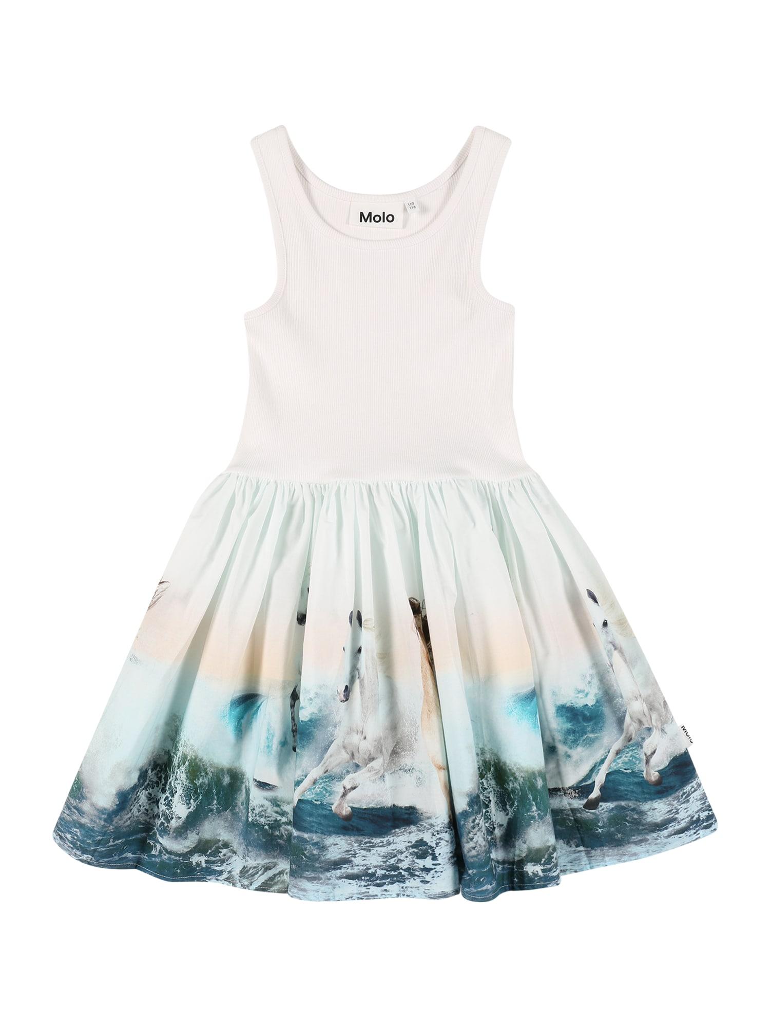 Molo Suknelė