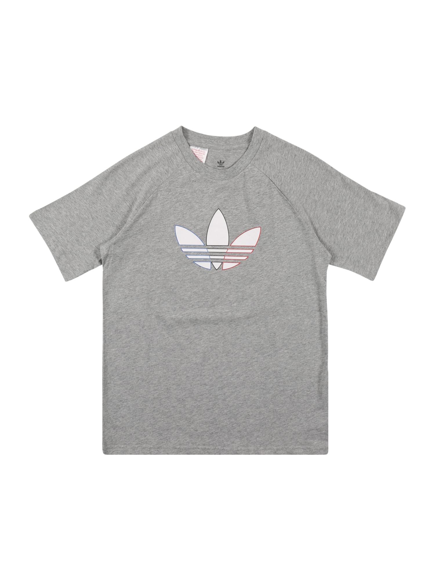 ADIDAS ORIGINALS Marškinėliai margai pilka / balta / mėlyna / raudona / juoda