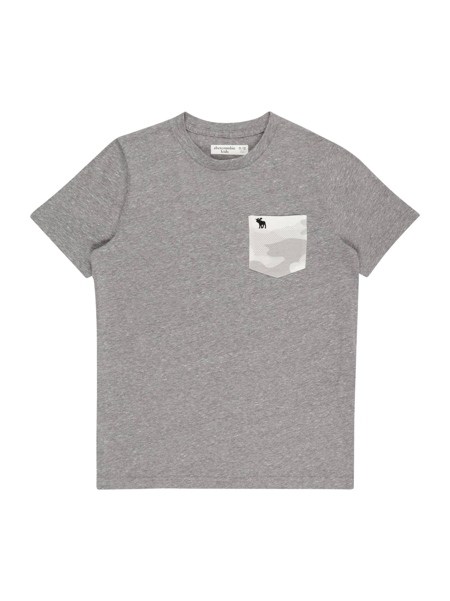 Abercrombie & Fitch Marškinėliai 'NOVELTY' pilka / šviesiai pilka