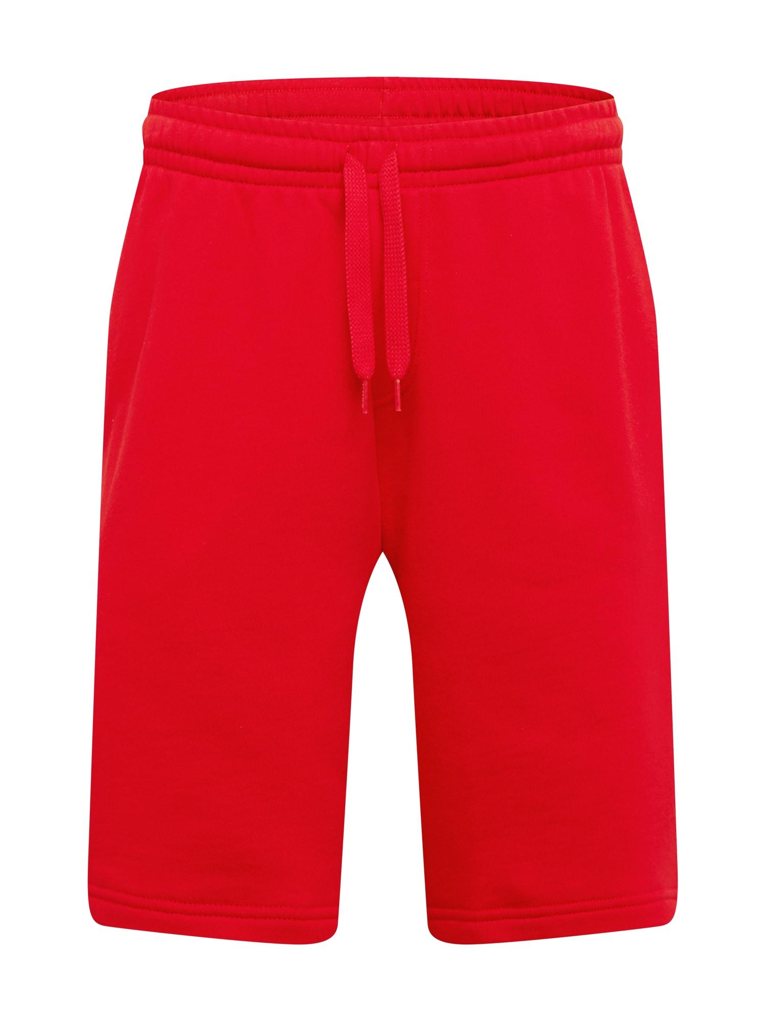 Lacoste Sport Sportinės kelnės raudona