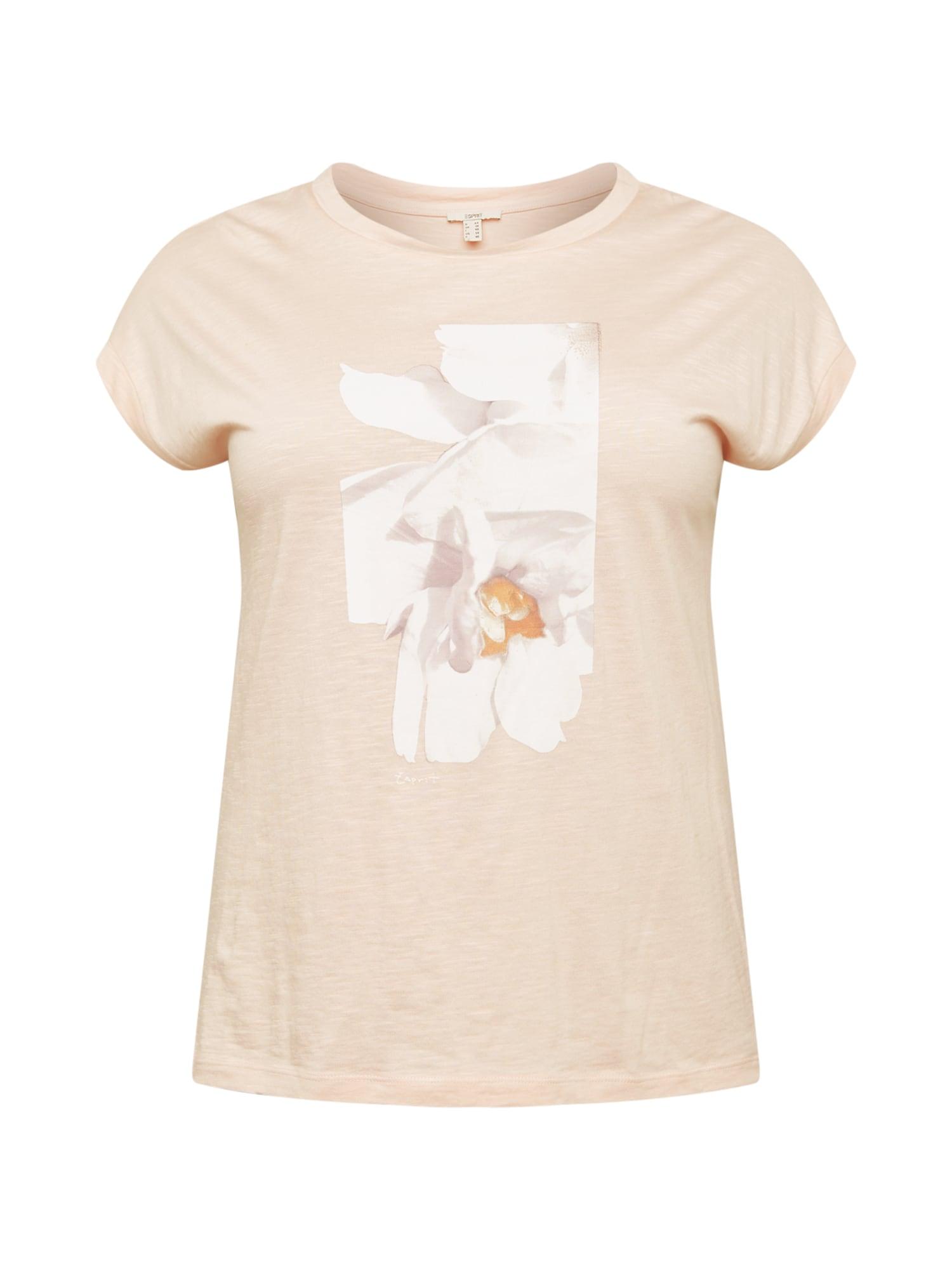 Esprit Curves Marškinėliai persikų spalva / balta / tamsiai oranžinė / pilka