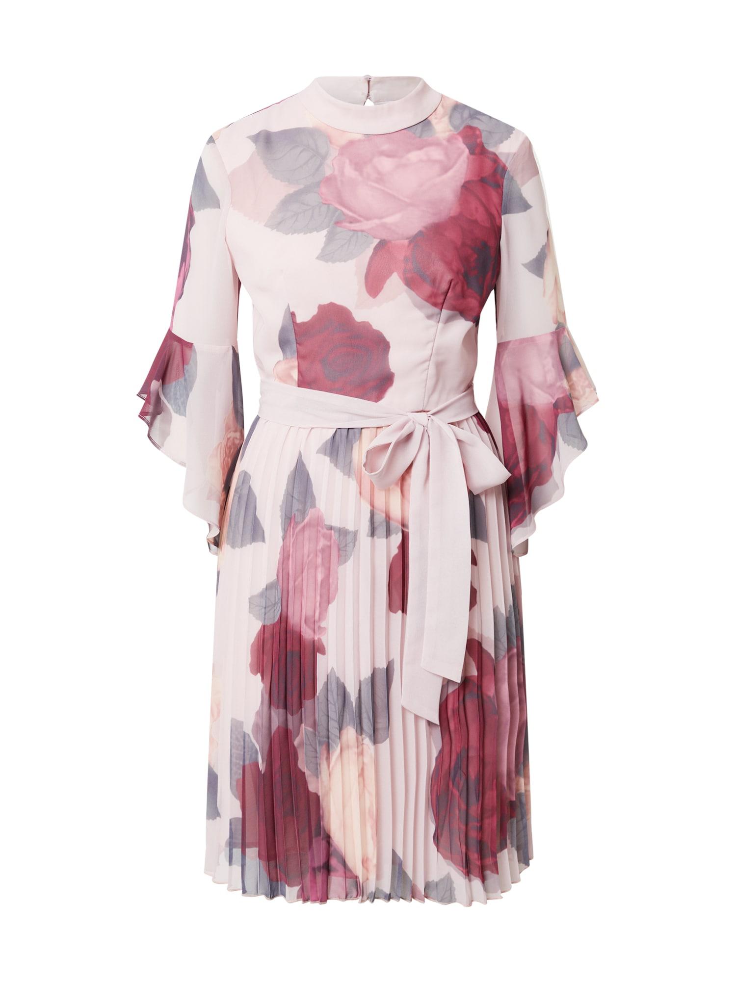 Chi Chi London Suknelė rožių spalva / pastelinė rožinė / vyno raudona spalva / pastelinė žalia