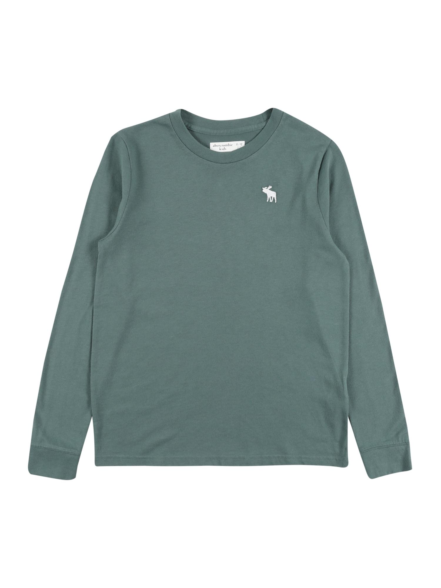 Abercrombie & Fitch Marškinėliai smaragdinė spalva / balta