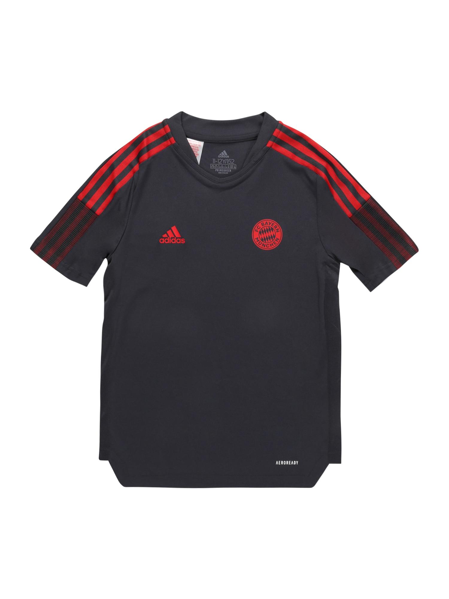ADIDAS PERFORMANCE Sportiniai marškinėliai 'FCB TR JSY Y' pilka / raudona