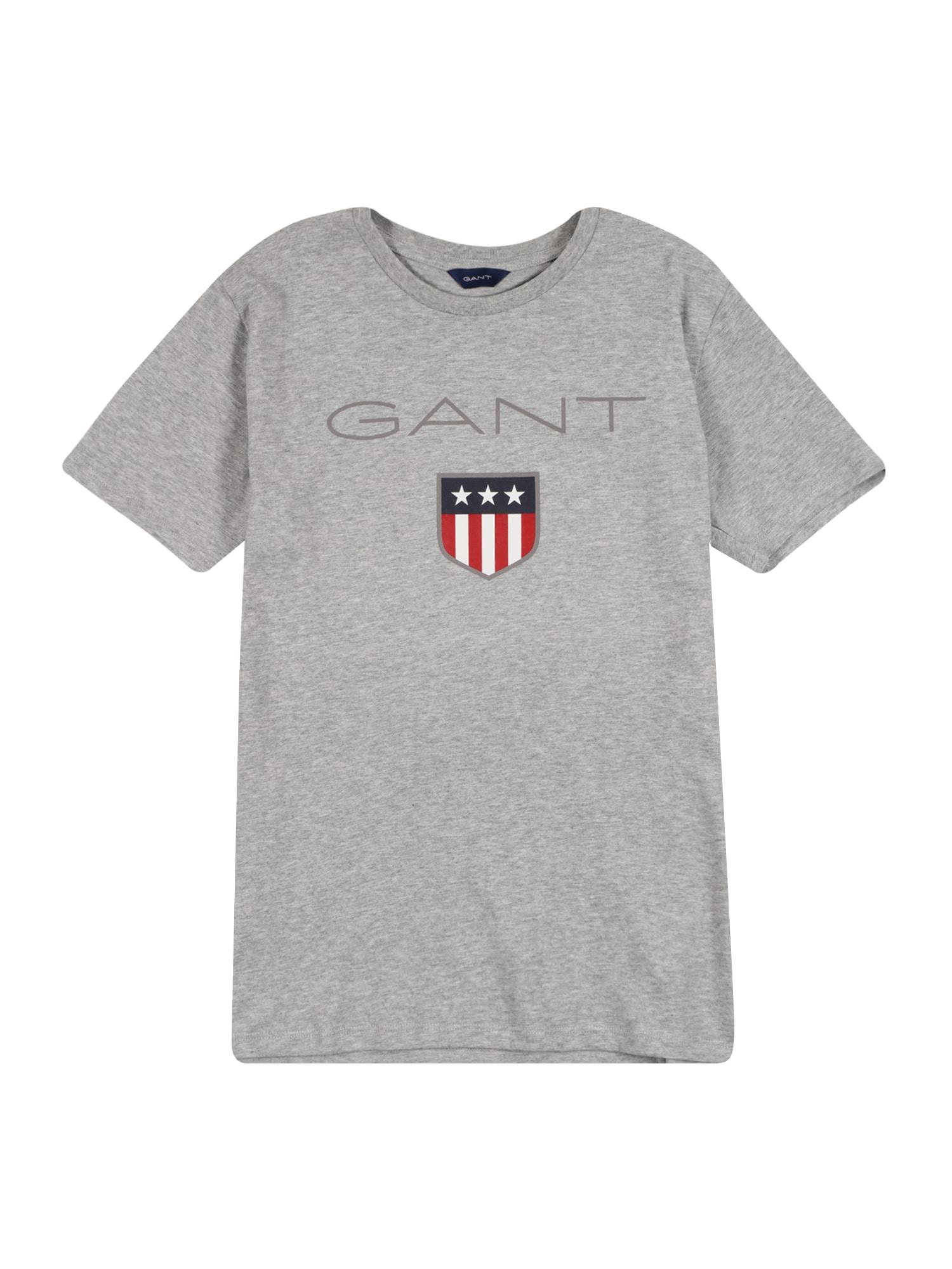 GANT Marškinėliai margai pilka / balta / tamsiai mėlyna / raudona