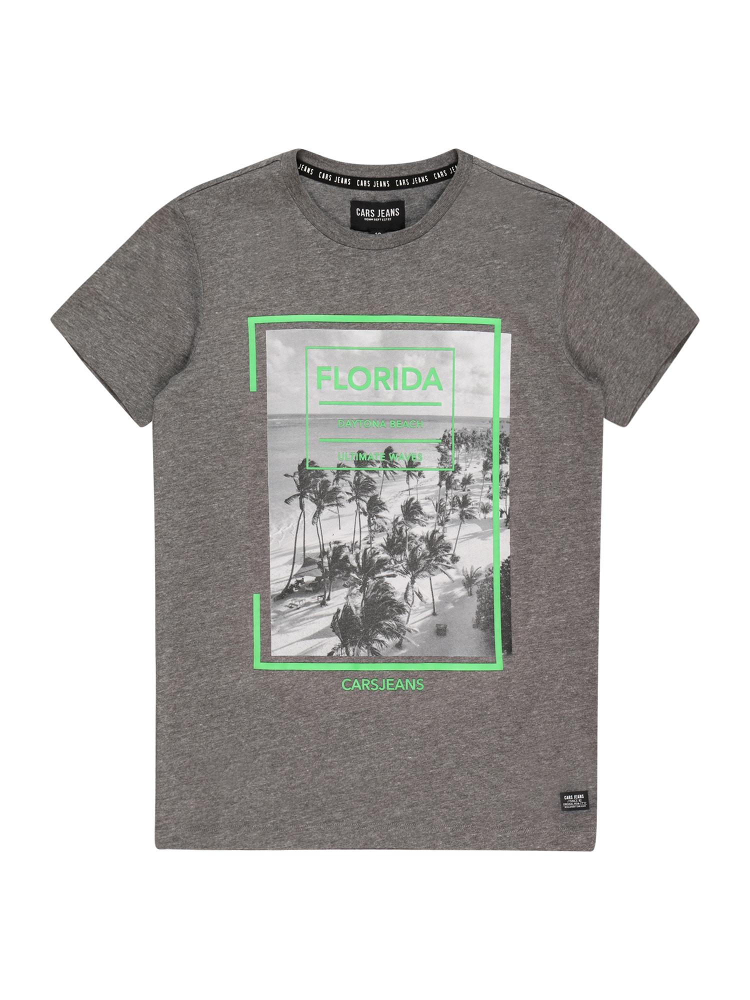 Cars Jeans Marškinėliai margai pilka / balta / šviesiai žalia