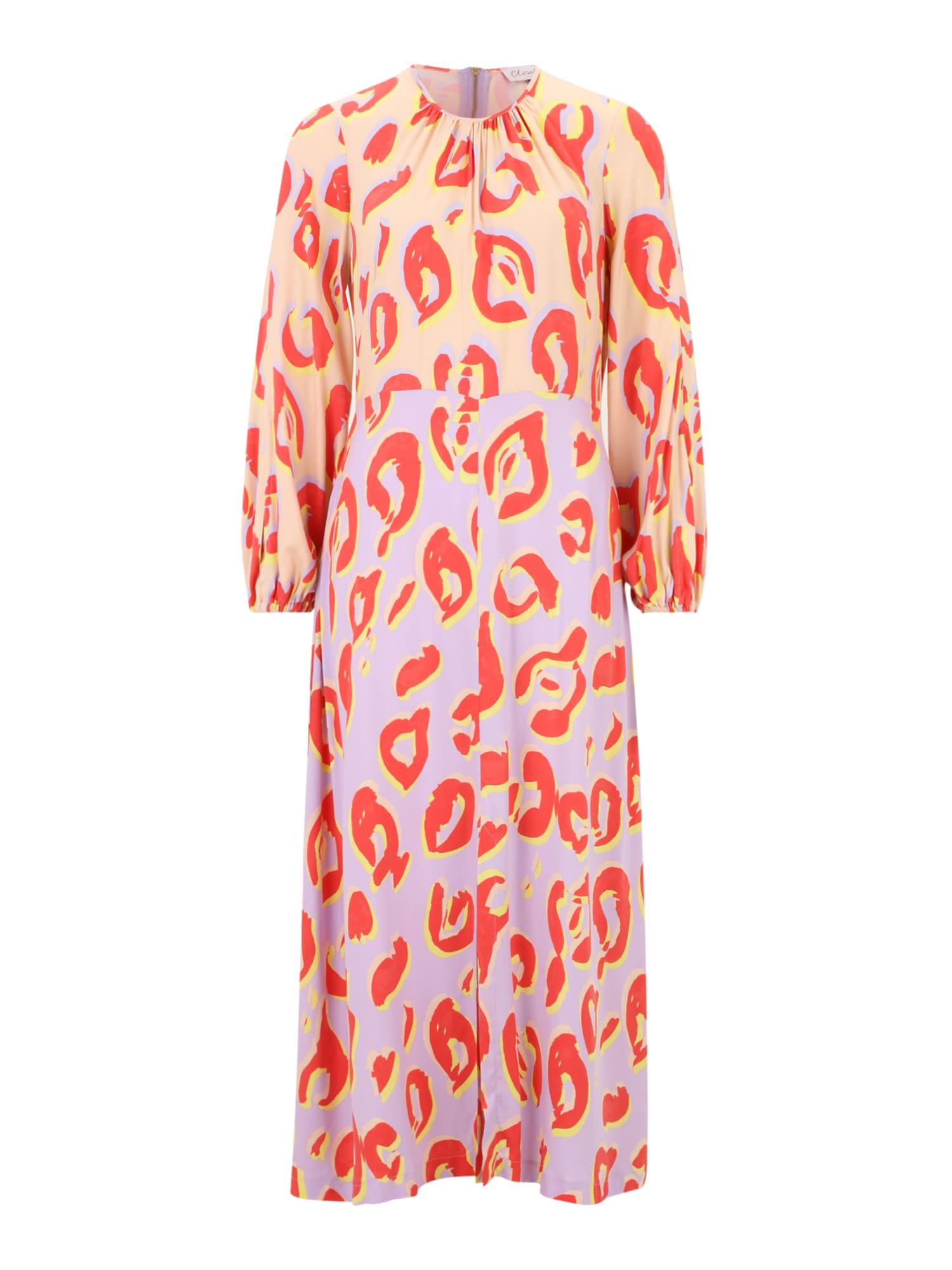 Closet London Suknelė abrikosų spalva / purpurinė / šviesiai raudona / geltona