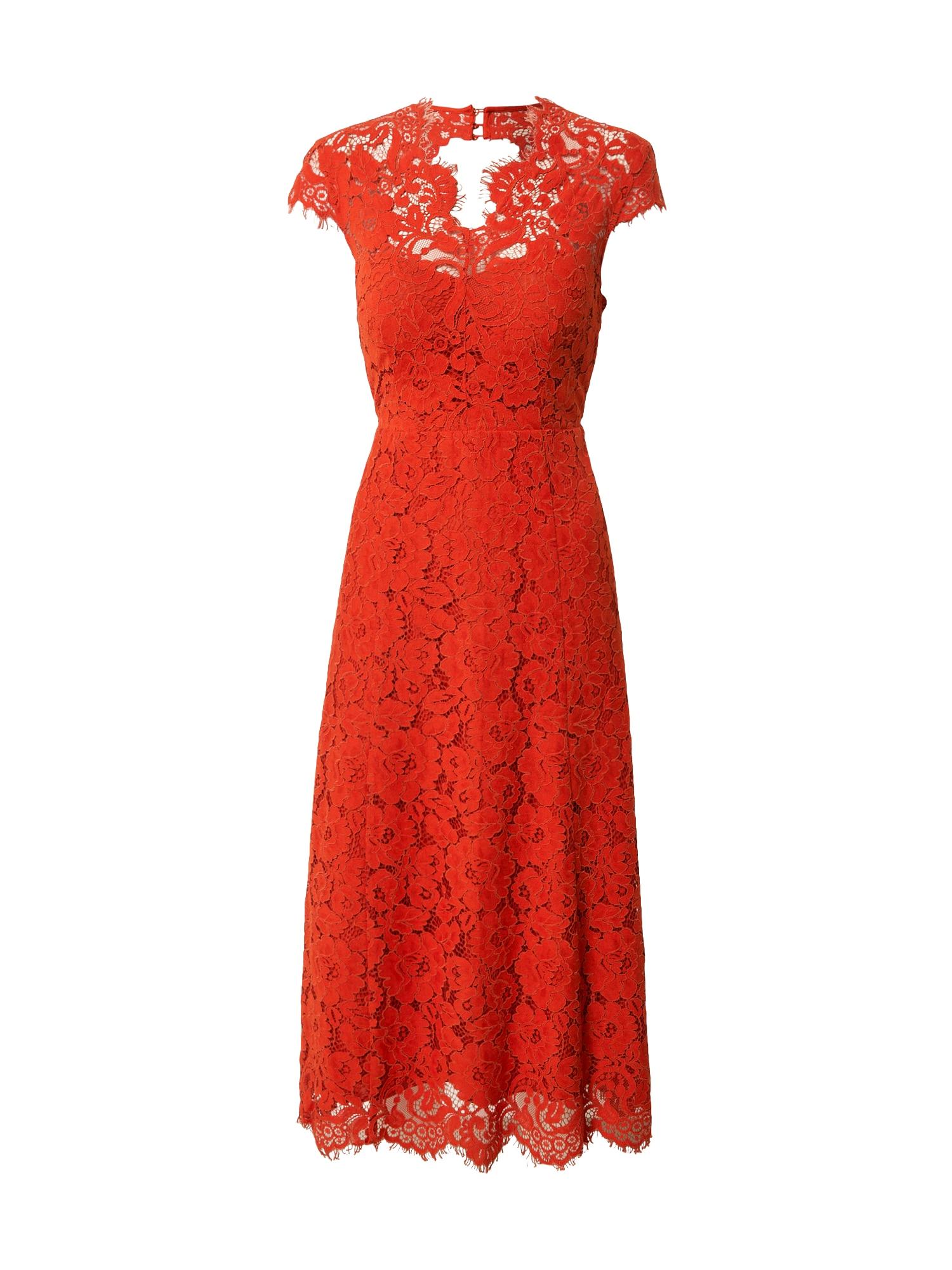 IVY & OAK Kokteilinė suknelė ryškiai raudona