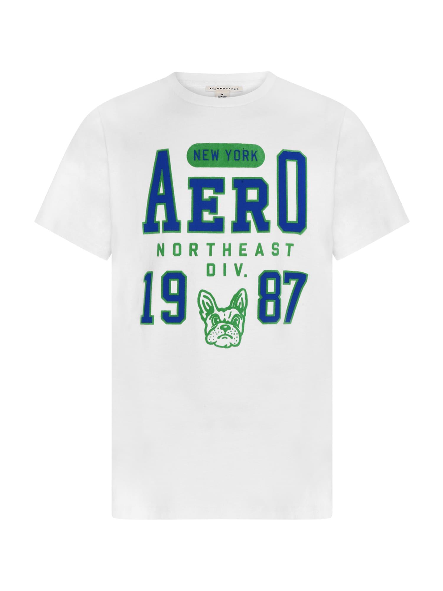 AÈROPOSTALE Marškinėliai balta / mėlyna / žalia