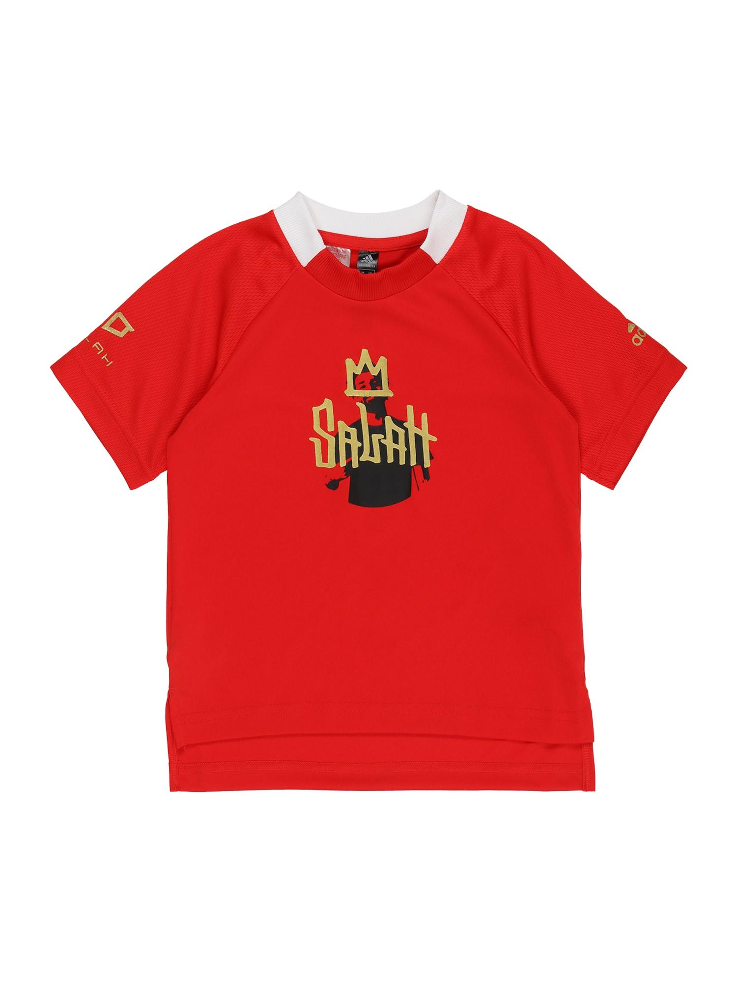 ADIDAS PERFORMANCE Sportiniai marškinėliai raudona / auksas / juoda