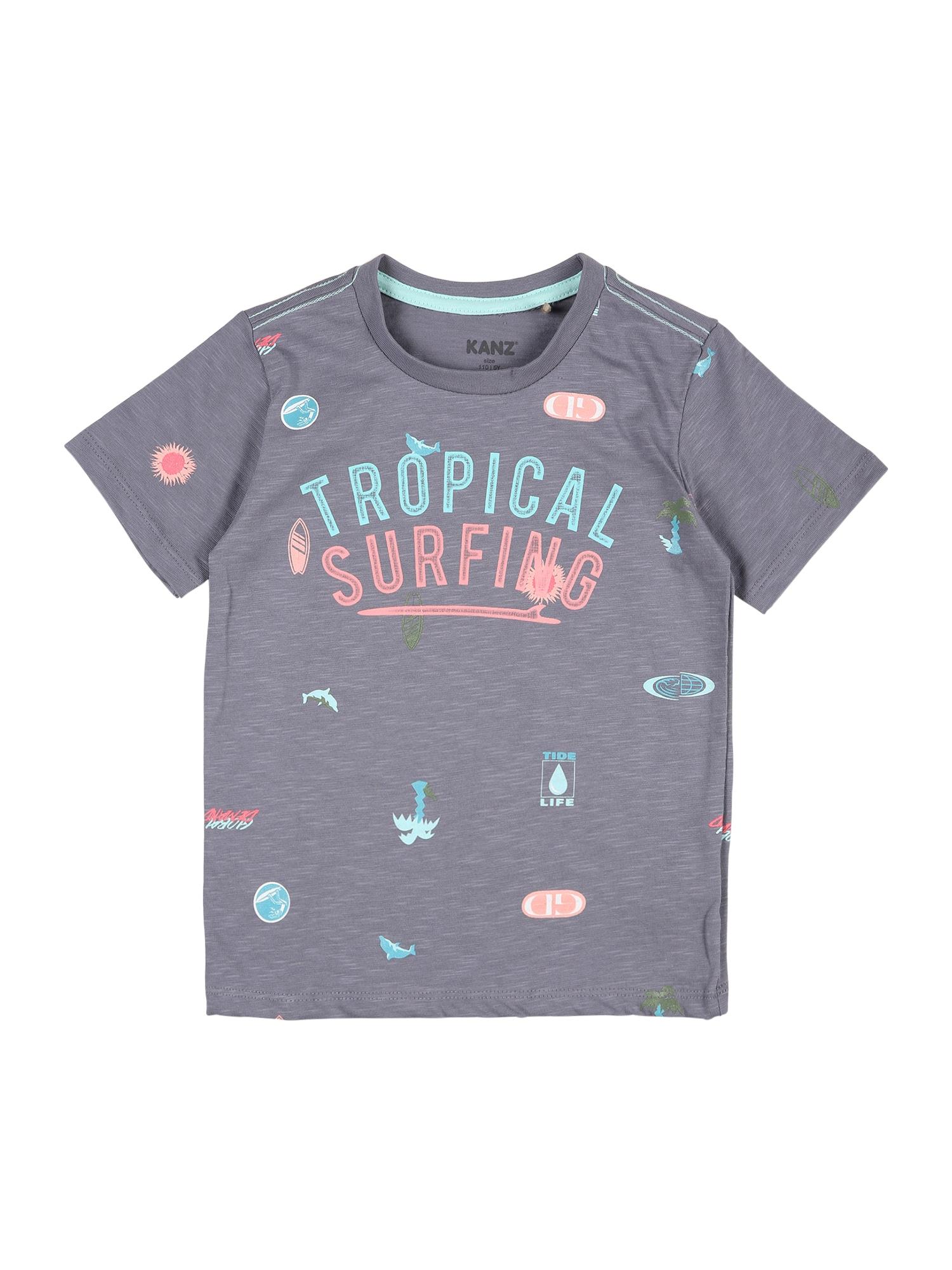 KANZ Marškinėliai pilka / vandens spalva / koralų splava