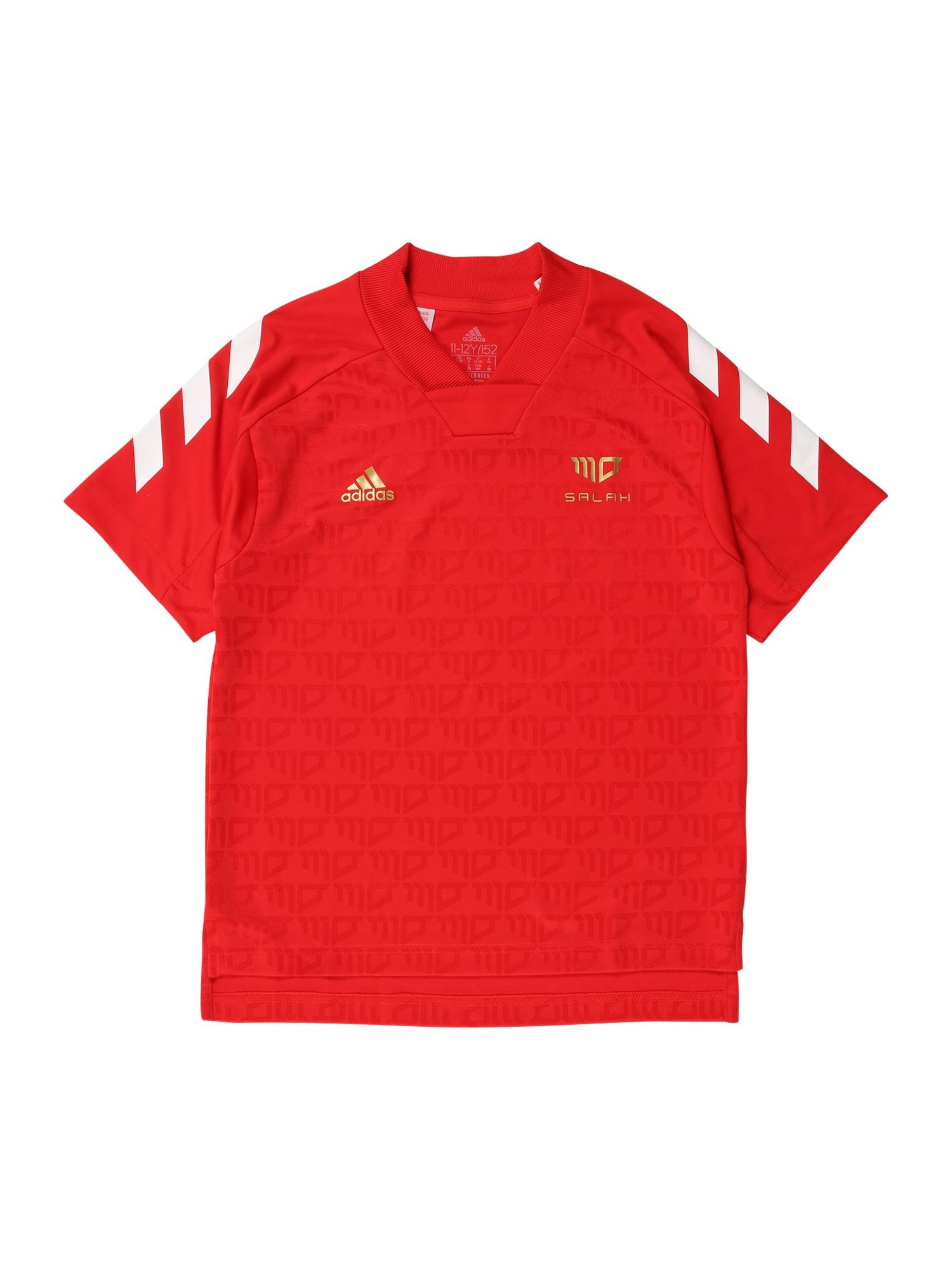 ADIDAS PERFORMANCE Sportiniai marškinėliai 'Salah' raudona / auksas / balta