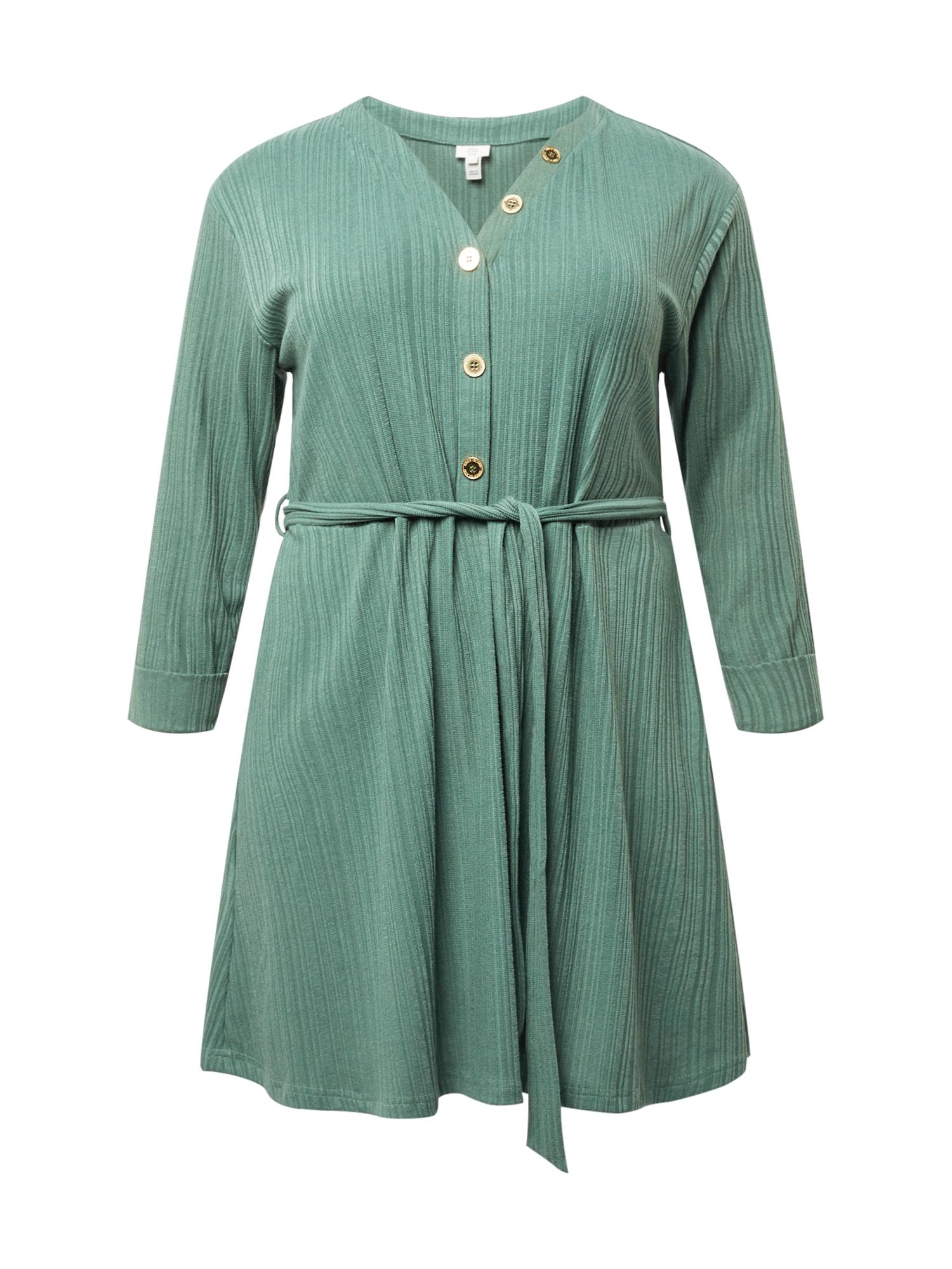 River Island Plus Palaidinės tipo suknelė mėtų spalva