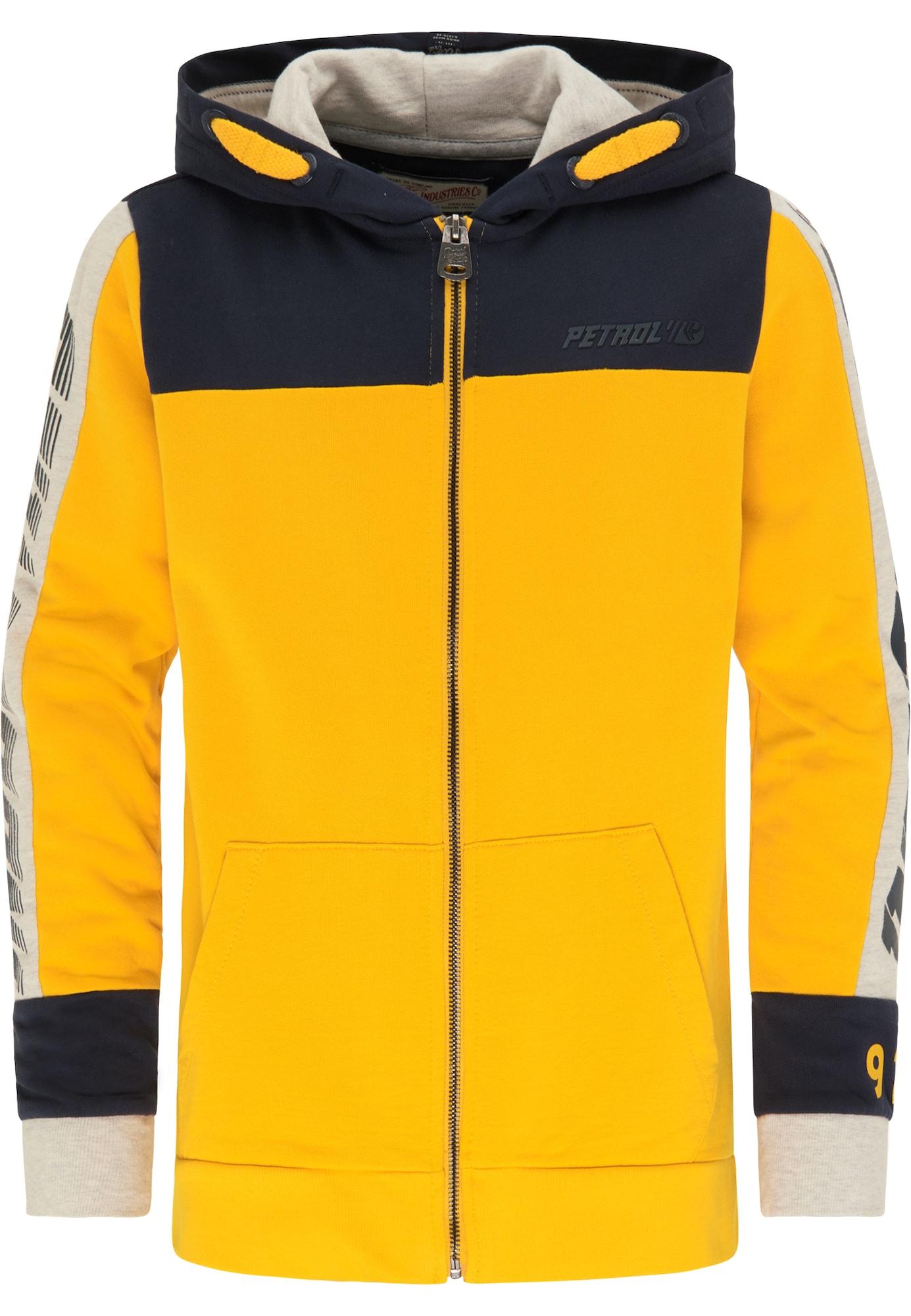 Petrol Industries Džemperis tamsiai mėlyna / šviesiai pilka / aukso geltonumo spalva