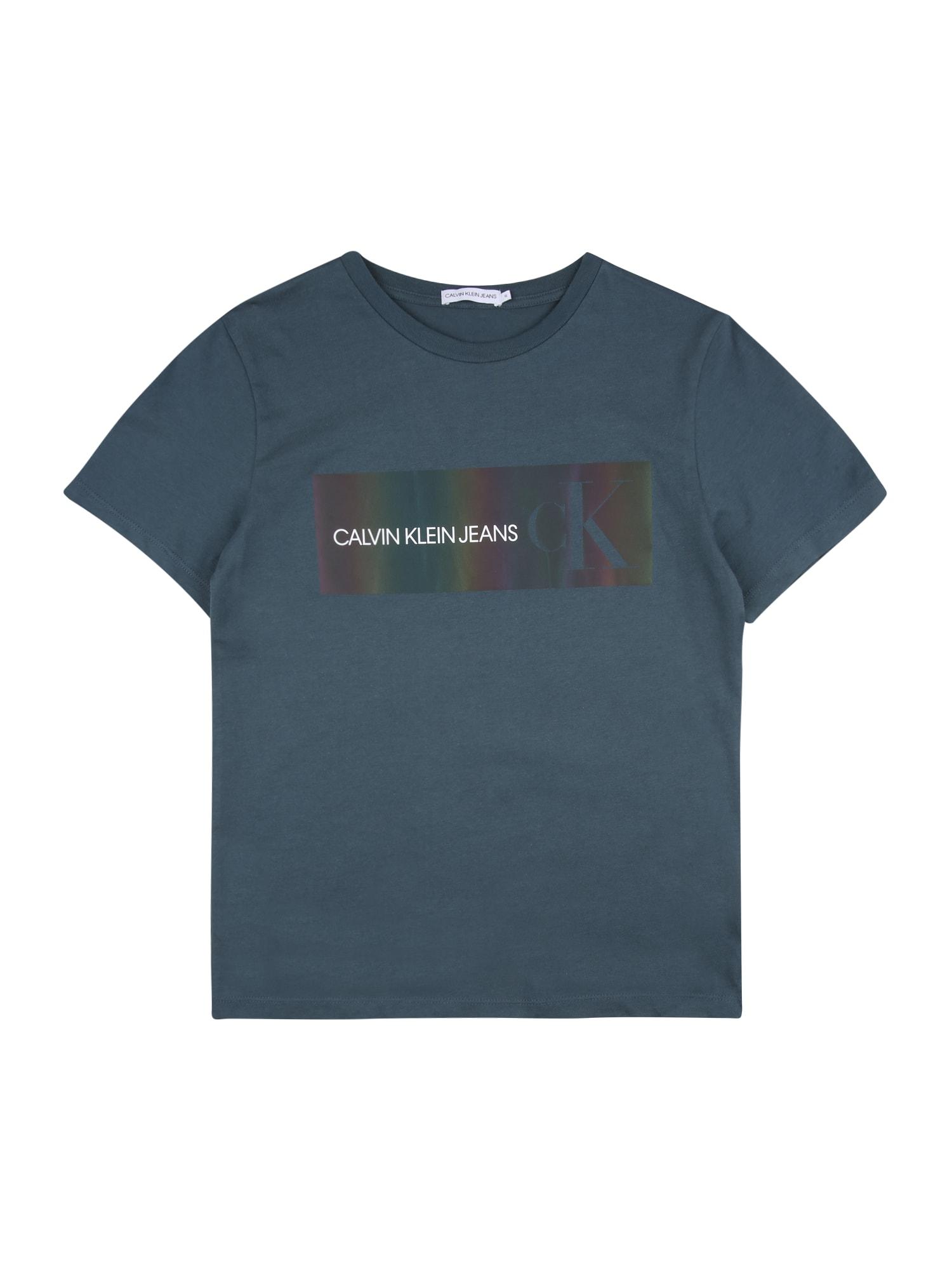 Calvin Klein Jeans Marškinėliai melsvai pilka / mišrios spalvos