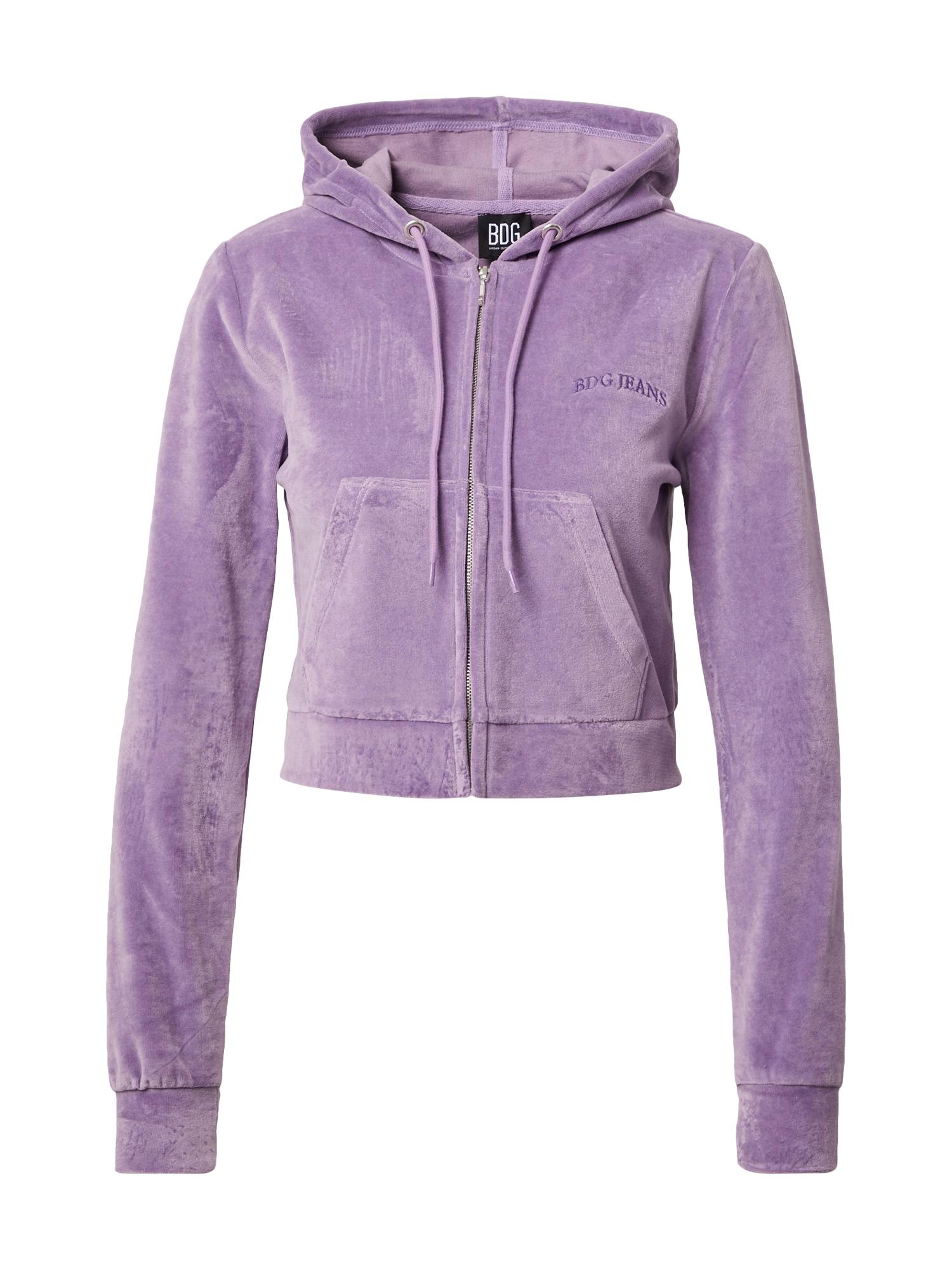 BDG Urban Outfitters Džemperis purpurinė