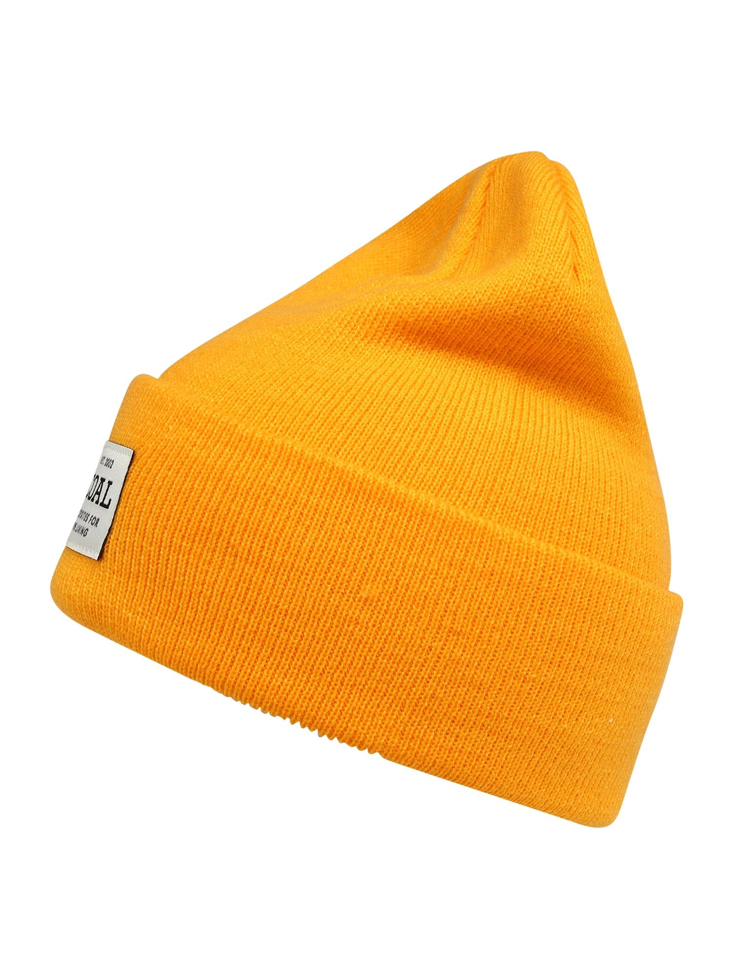 Coal Sportovní čepice  zlatě žlutá / bílá