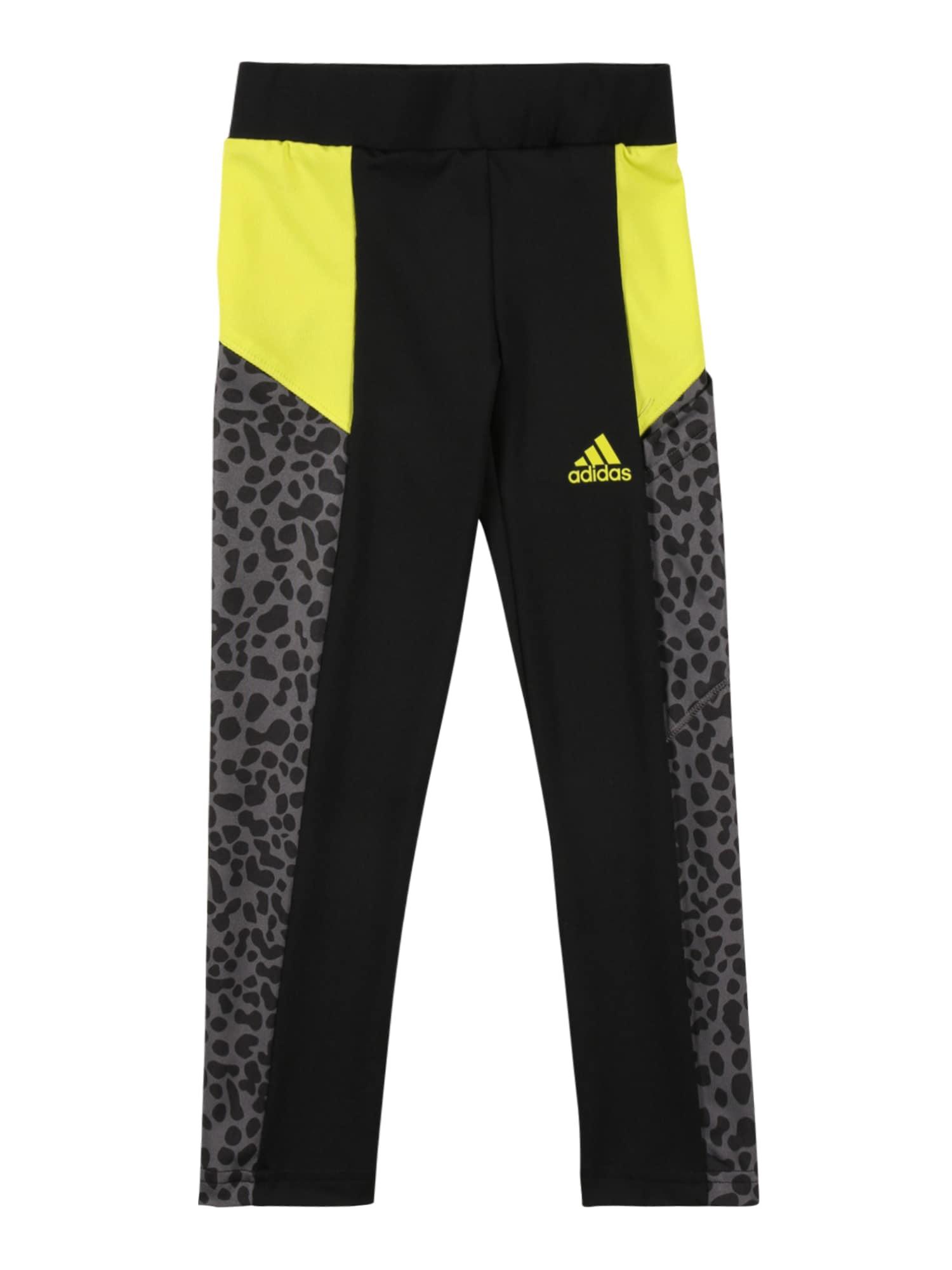 ADIDAS PERFORMANCE Sportinės kelnės juoda / neoninė geltona / pilka
