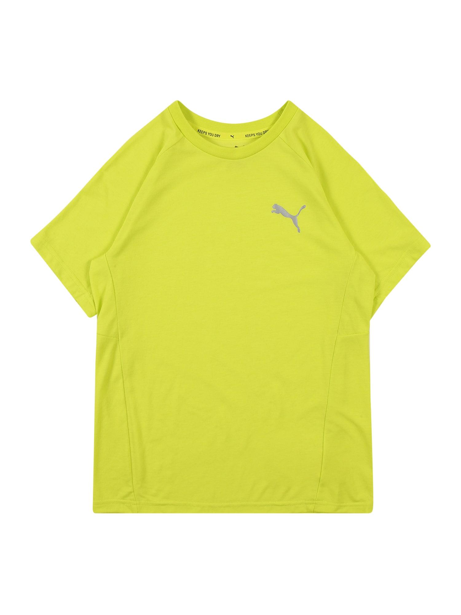 PUMA Sportiniai marškinėliai 'Evostripe' tamsiai geltona / sidabrinė