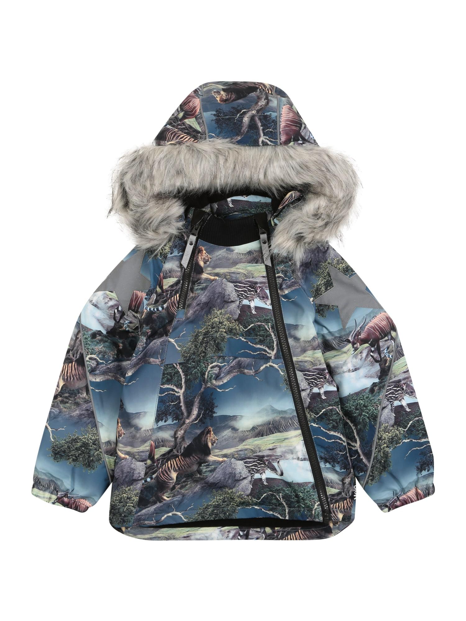 Molo Zimná bunda 'Hopla'  zmiešané farby