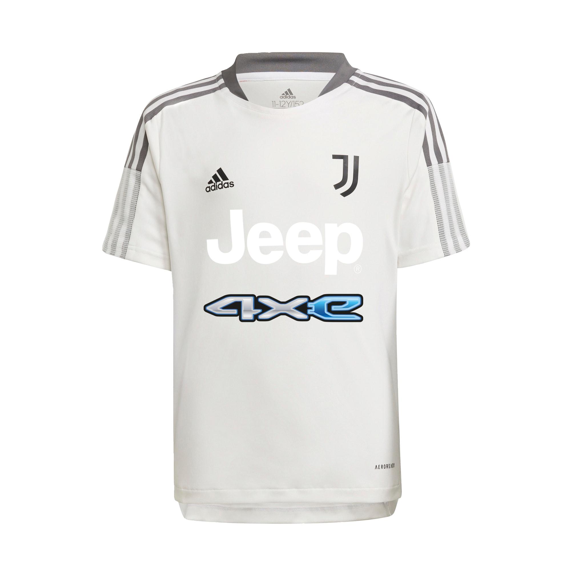 ADIDAS PERFORMANCE Sportiniai marškinėliai 'Juventus Turin' mėlyna / tamsiai pilka / juoda / balkšva