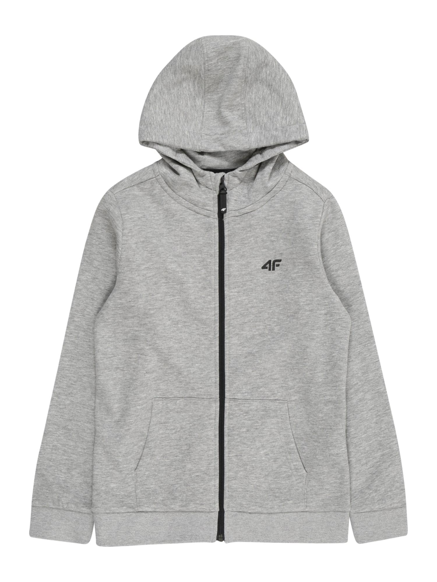 4F Sportinis džemperis pilka