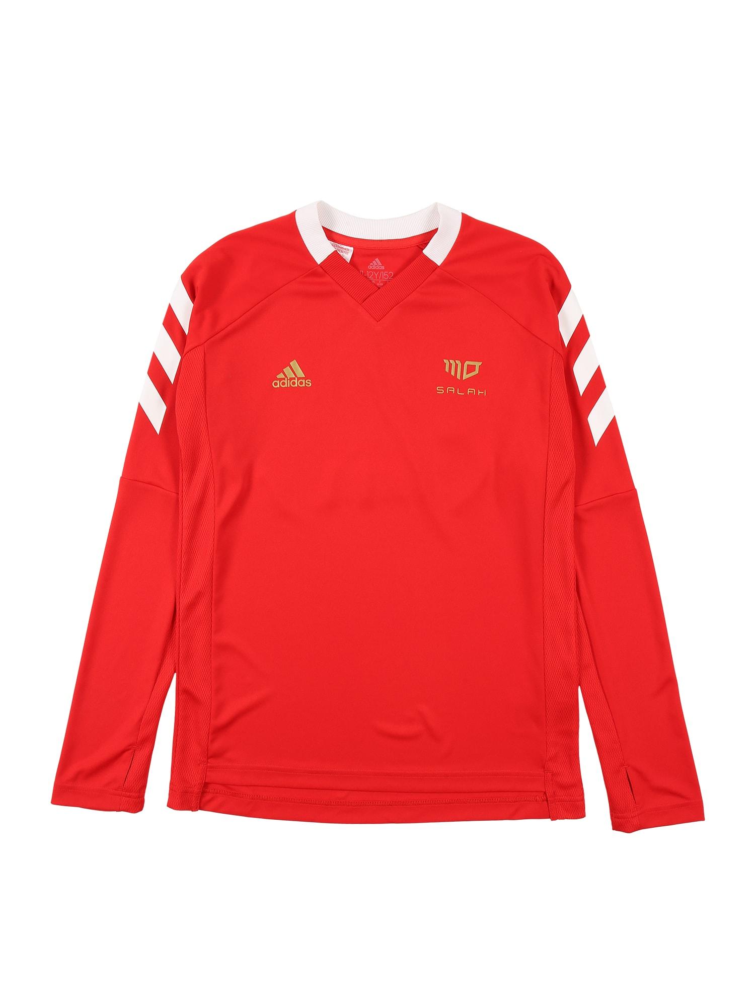 ADIDAS PERFORMANCE Sportiniai marškinėliai raudona / balta / auksas