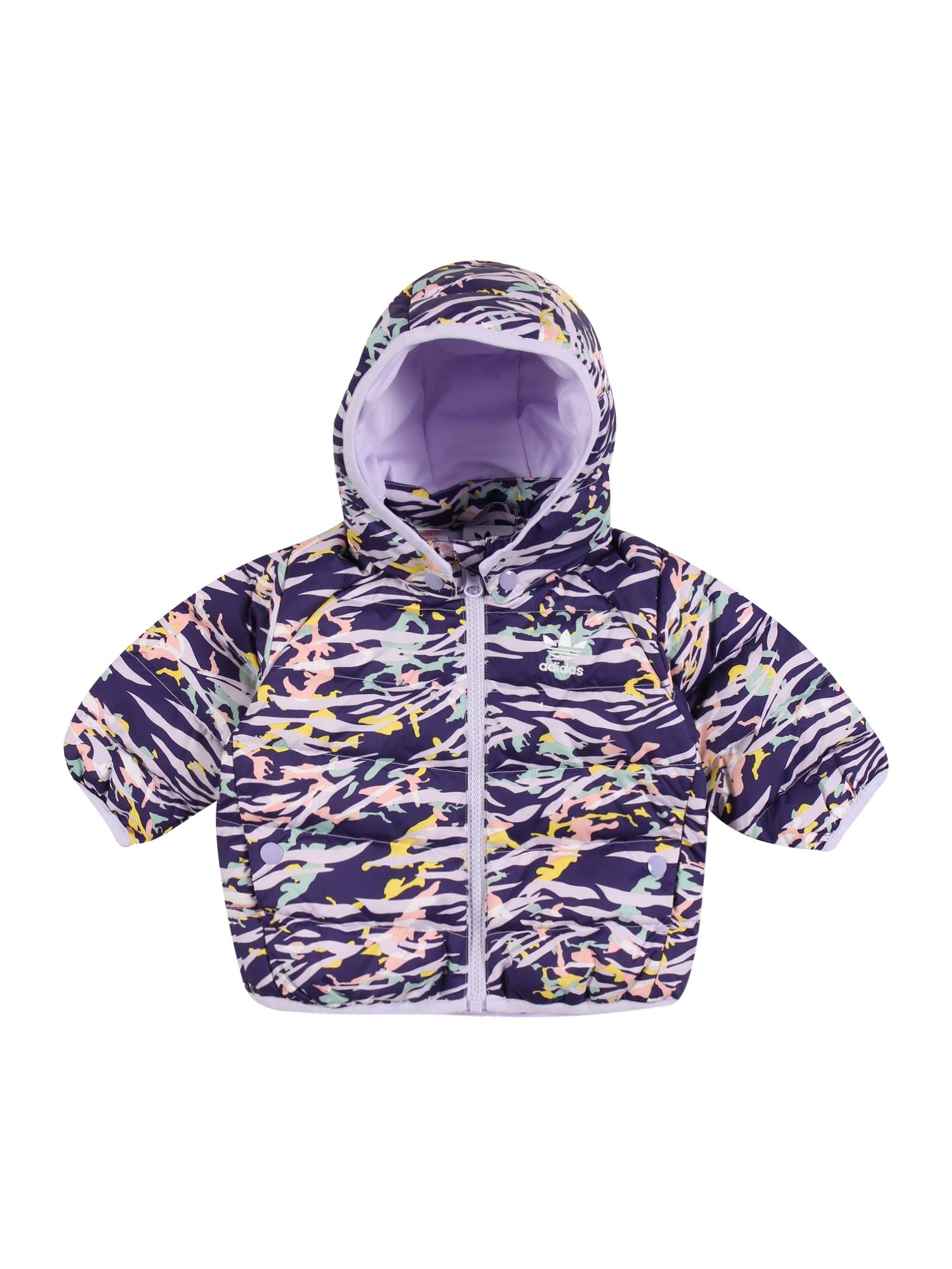 ADIDAS ORIGINALS Žieminė striukė tamsiai violetinė / mišrios spalvos
