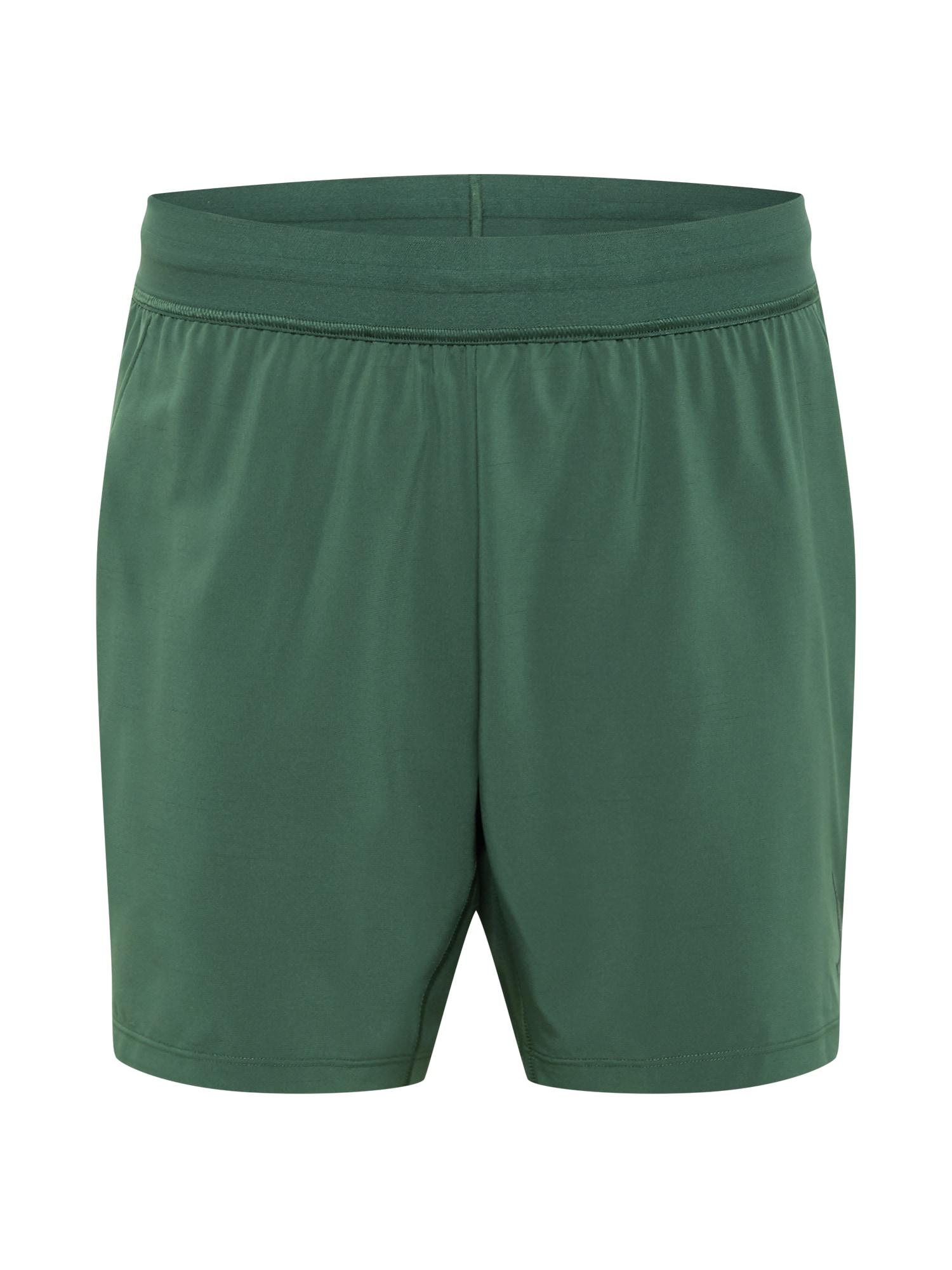 NIKE Sportinės kelnės smaragdinė spalva