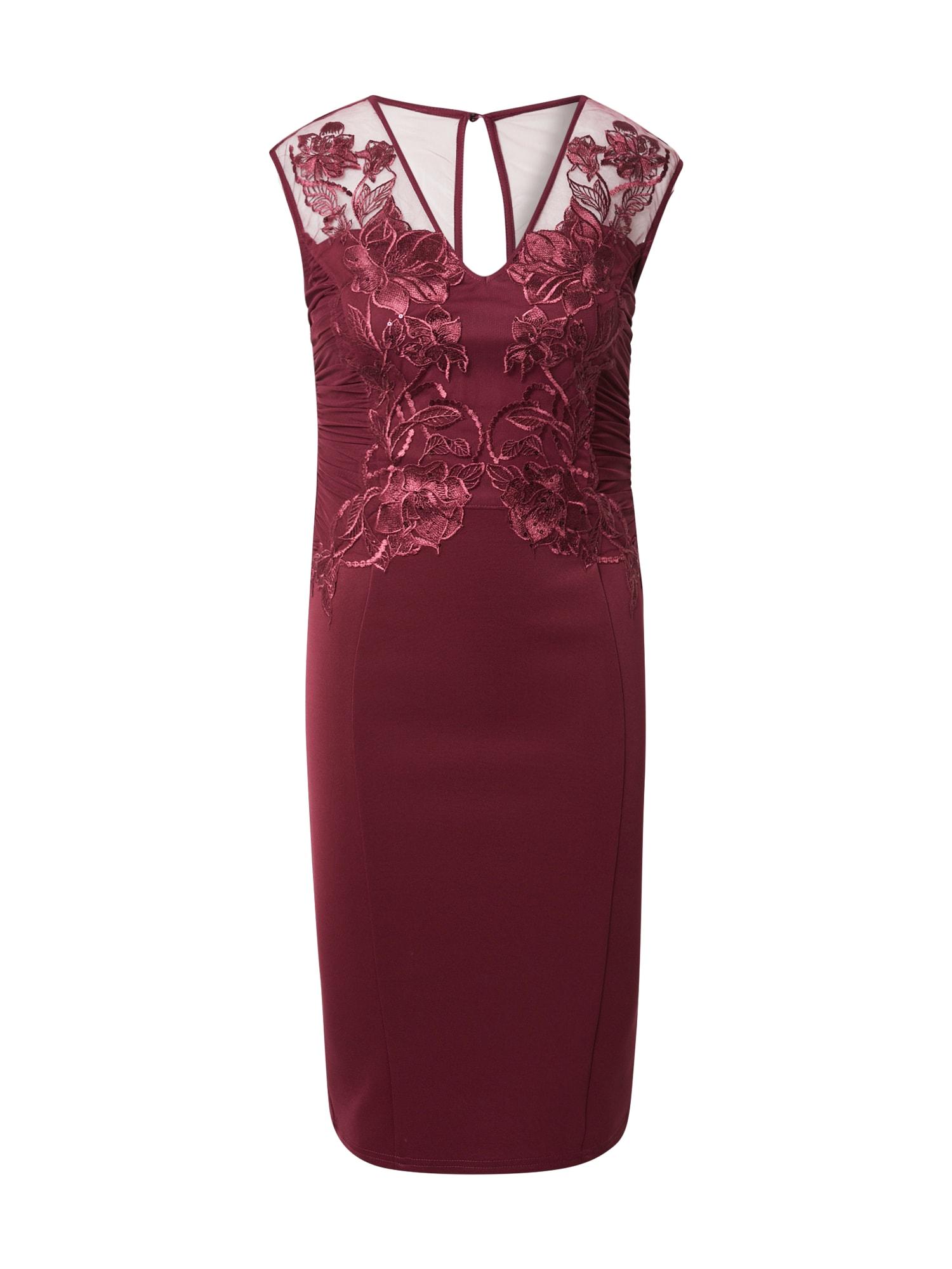 Lipsy Suknelė uogų spalva