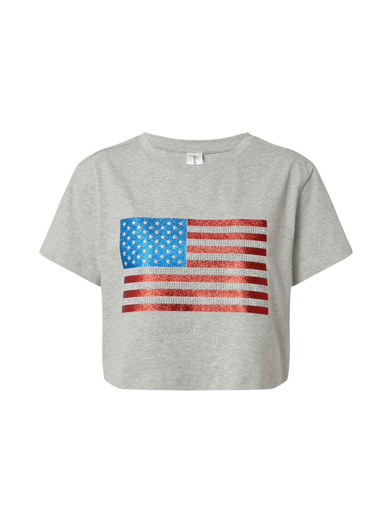 KENDALL + KYLIE Marškinėliai margai pilka / mėlyna / raudona