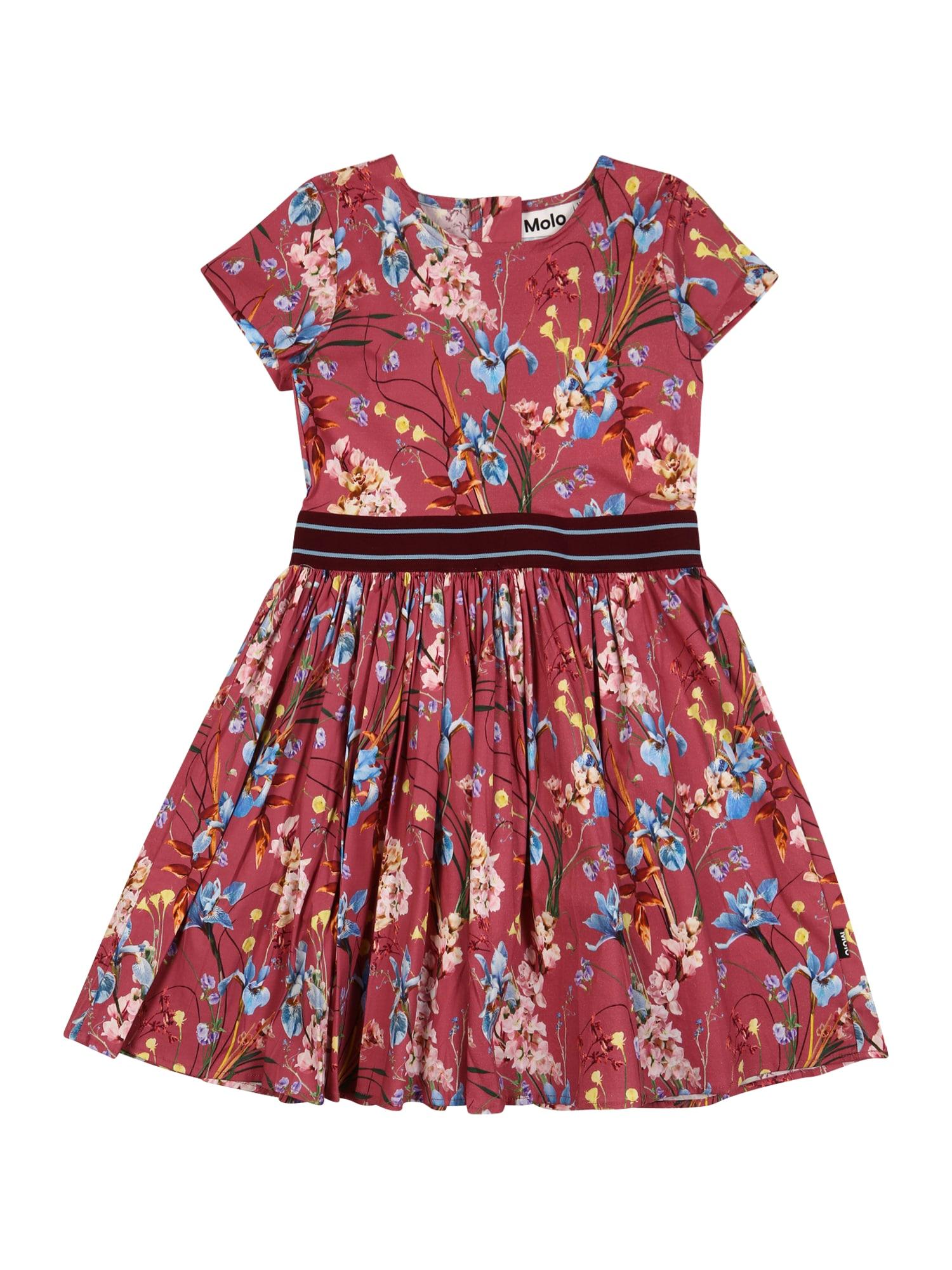 Molo Suknelė 'Candy' pitajų spalva / šviesiai mėlyna / geltona / alyvuogių spalva / mišrios spalvos