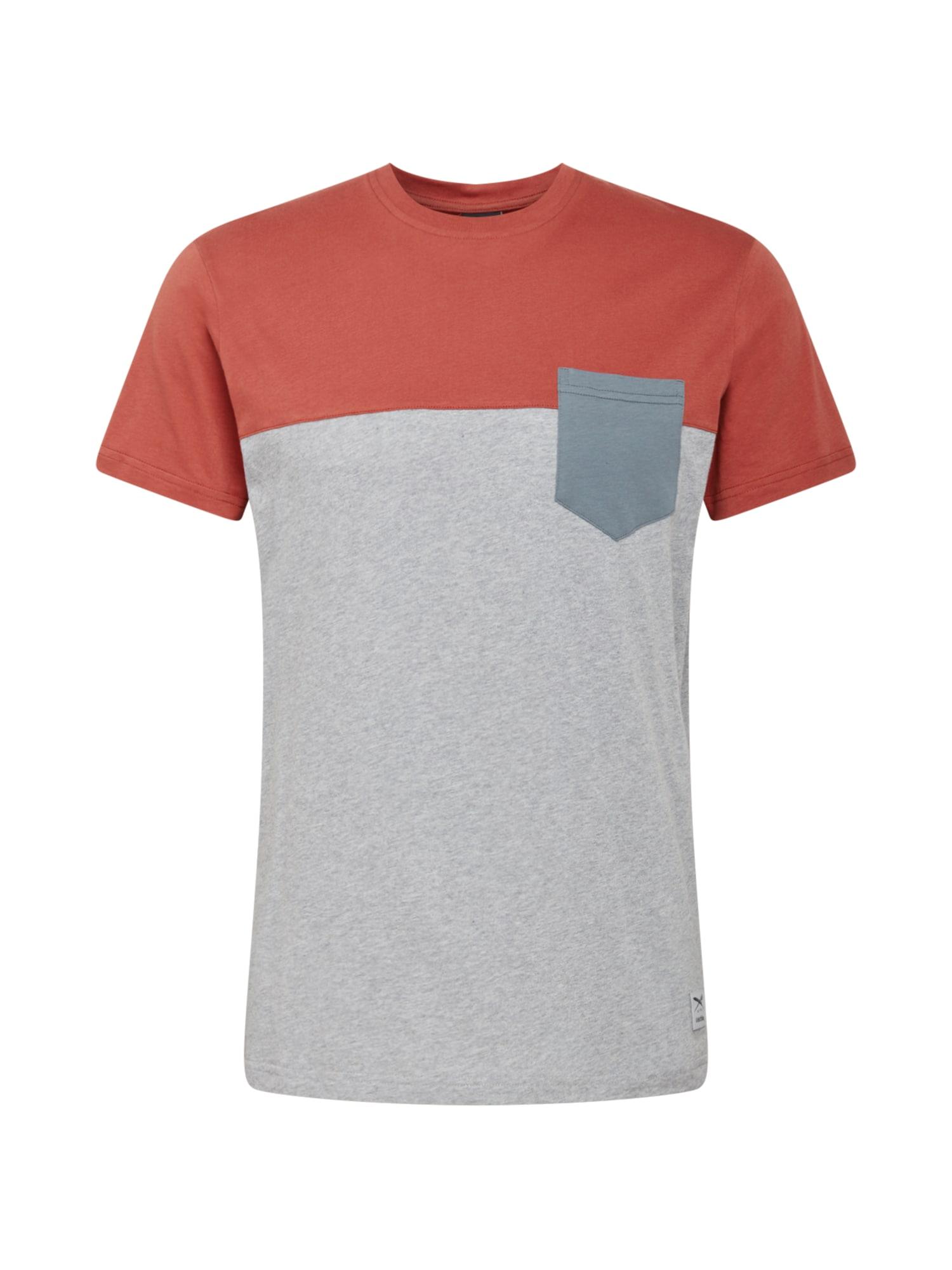 Iriedaily Marškinėliai margai pilka / bazalto pilka / melionų spalva