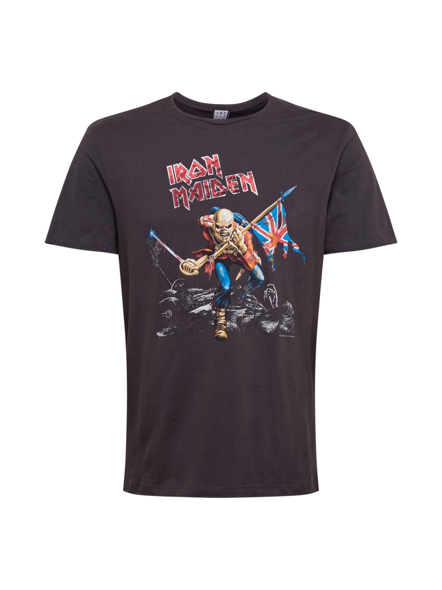 AMPLIFIED Marškinėliai 'Iron Maiden 80s Tour' tamsiai pilka / mišrios spalvos