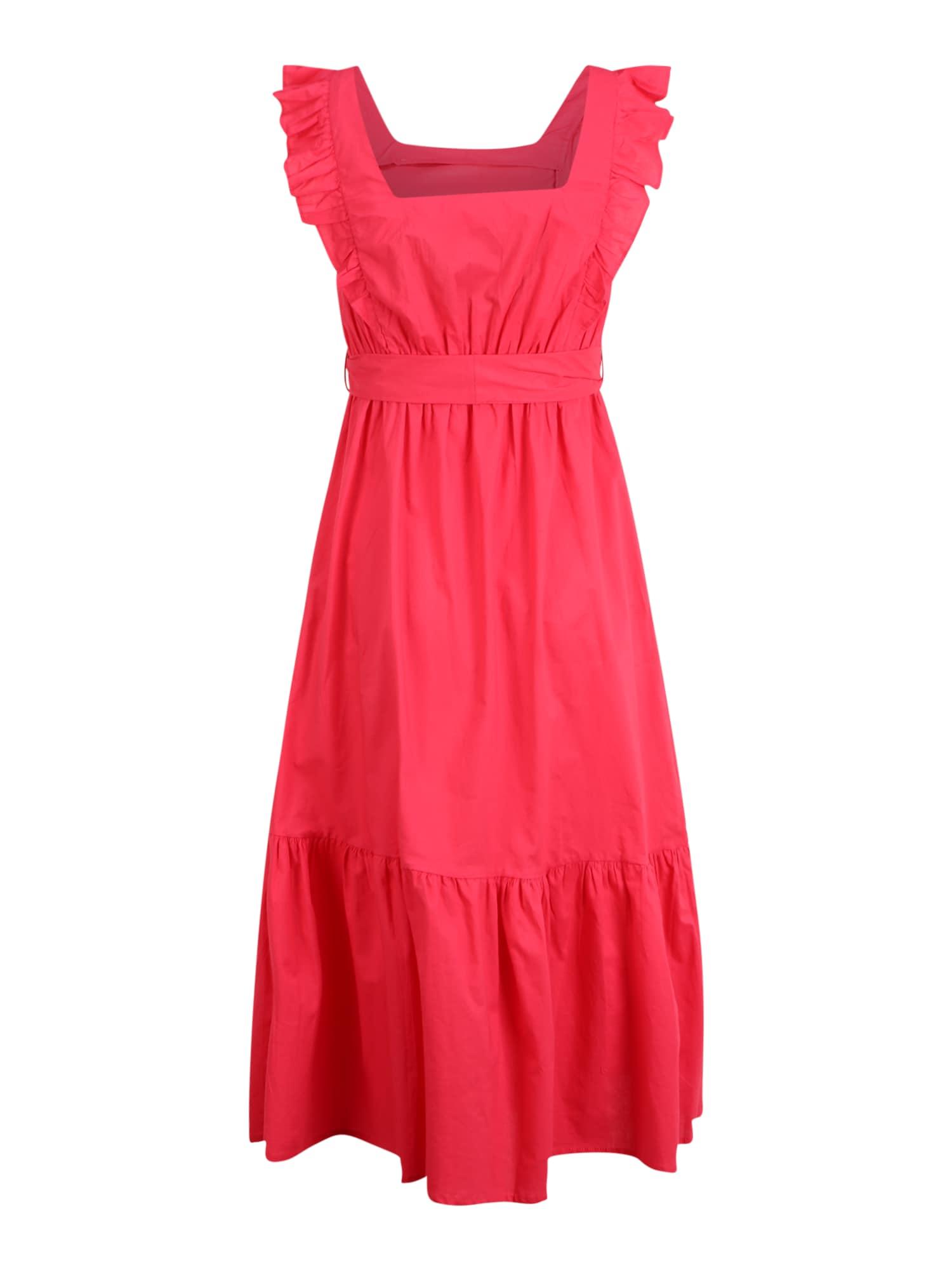 Dorothy Perkins (Petite) Suknelė rožių spalva