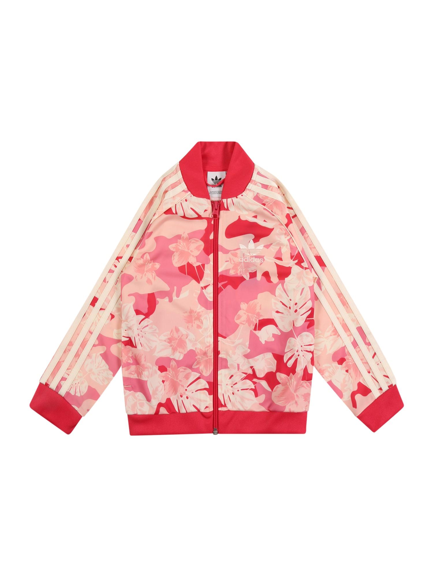 ADIDAS ORIGINALS Džemperis rožių spalva / kremo / avietinė / šviesiai rožinė