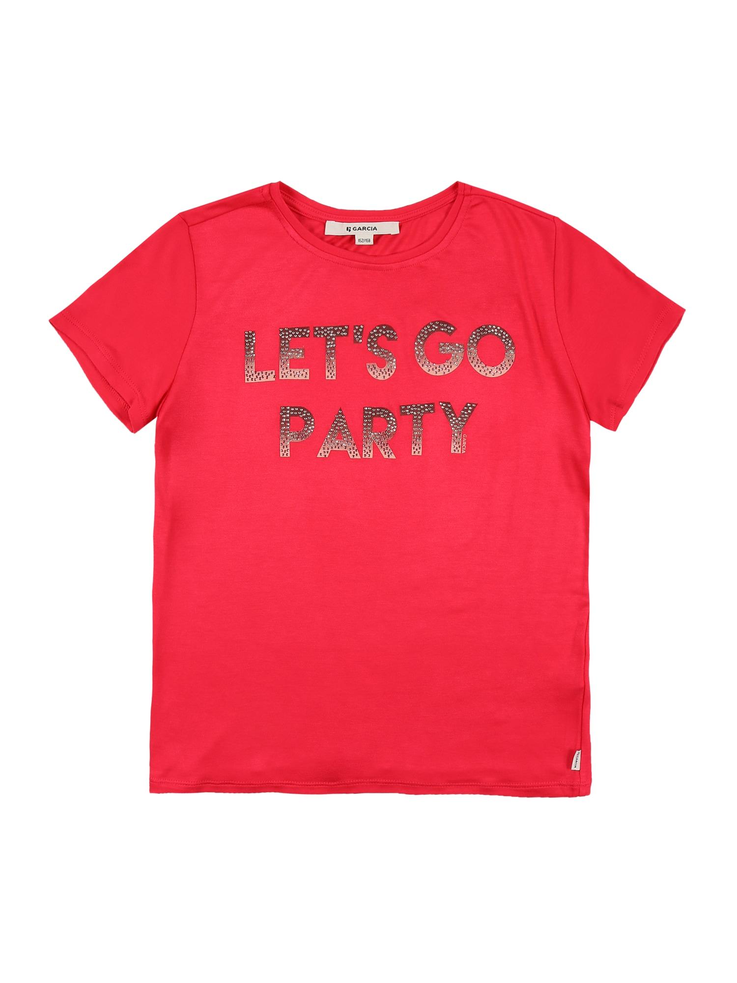 GARCIA Marškinėliai pitajų spalva / rusvai pilka / sidabrinė