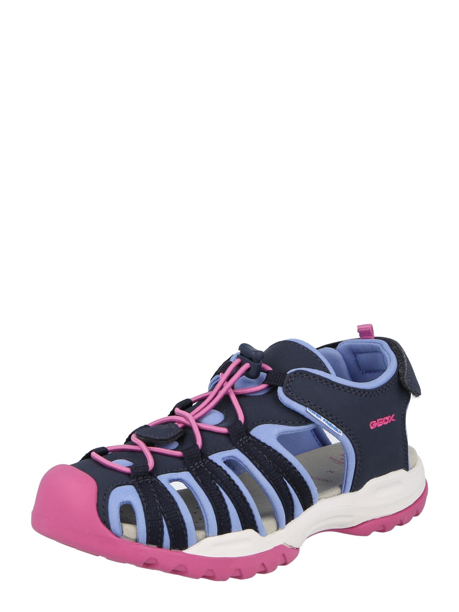 GEOX Sandalai tamsiai mėlyna / šviesiai rožinė